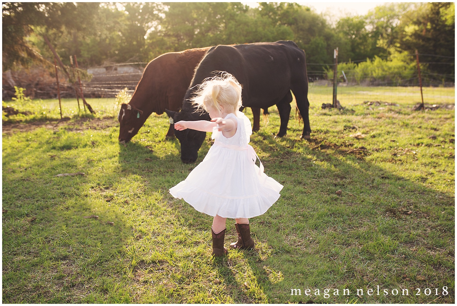 fort_worth_family_photographer_cow_mini_sessions028.jpg