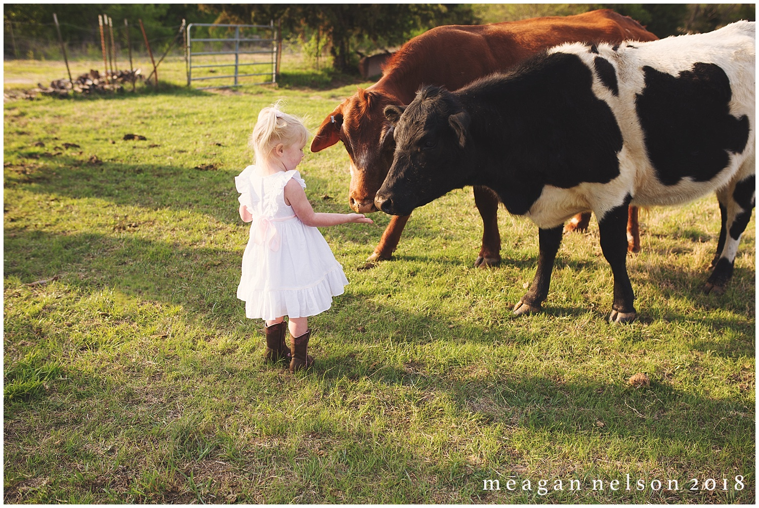 fort_worth_family_photographer_cow_mini_sessions027.jpg