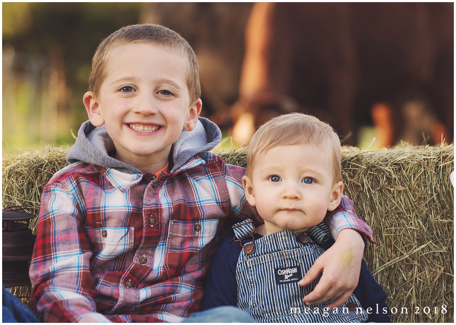 fort_worth_family_photographer_cow_mini_sessions036.jpg