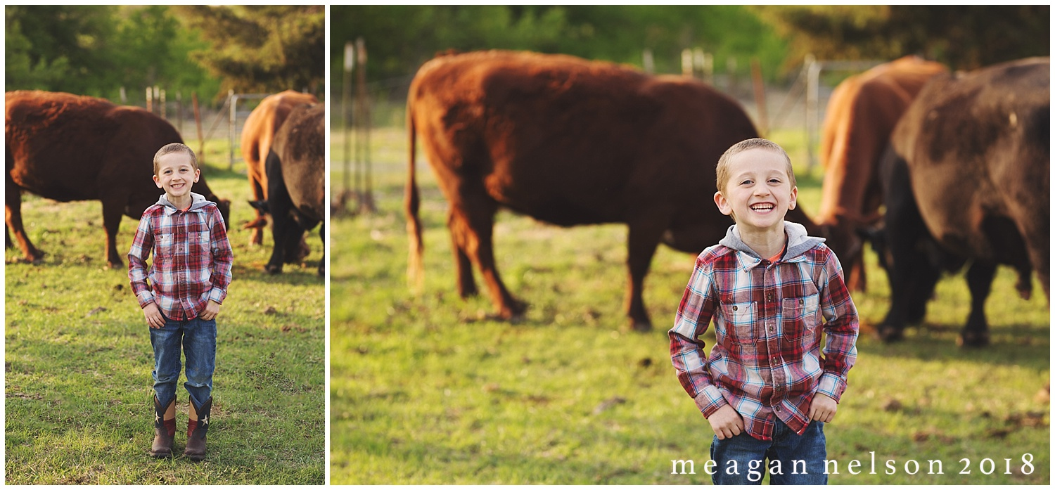 fort_worth_family_photographer_cow_mini_sessions041.jpg