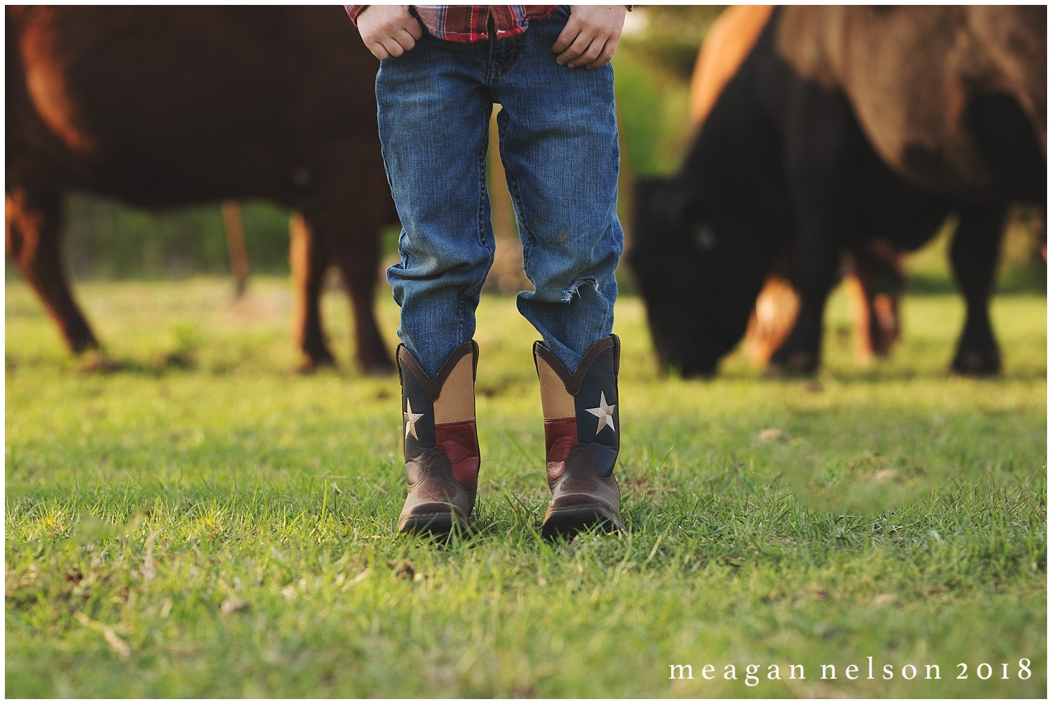 fort_worth_family_photographer_cow_mini_sessions042.jpg