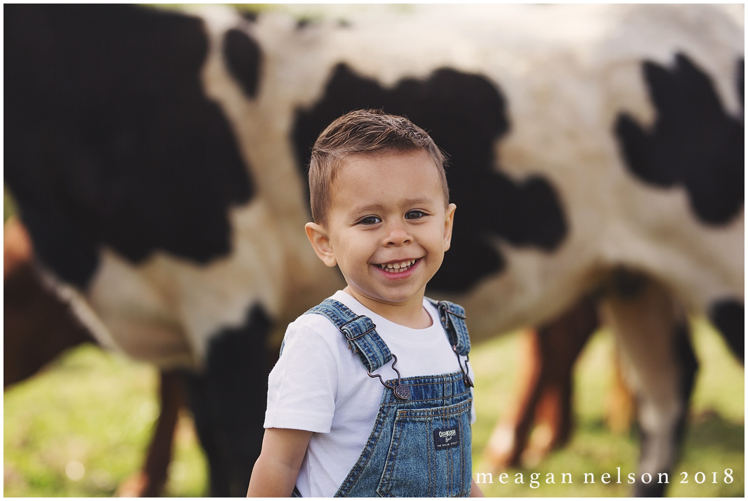fort_worth_family_photographer_cow_mini_sessions047.jpg