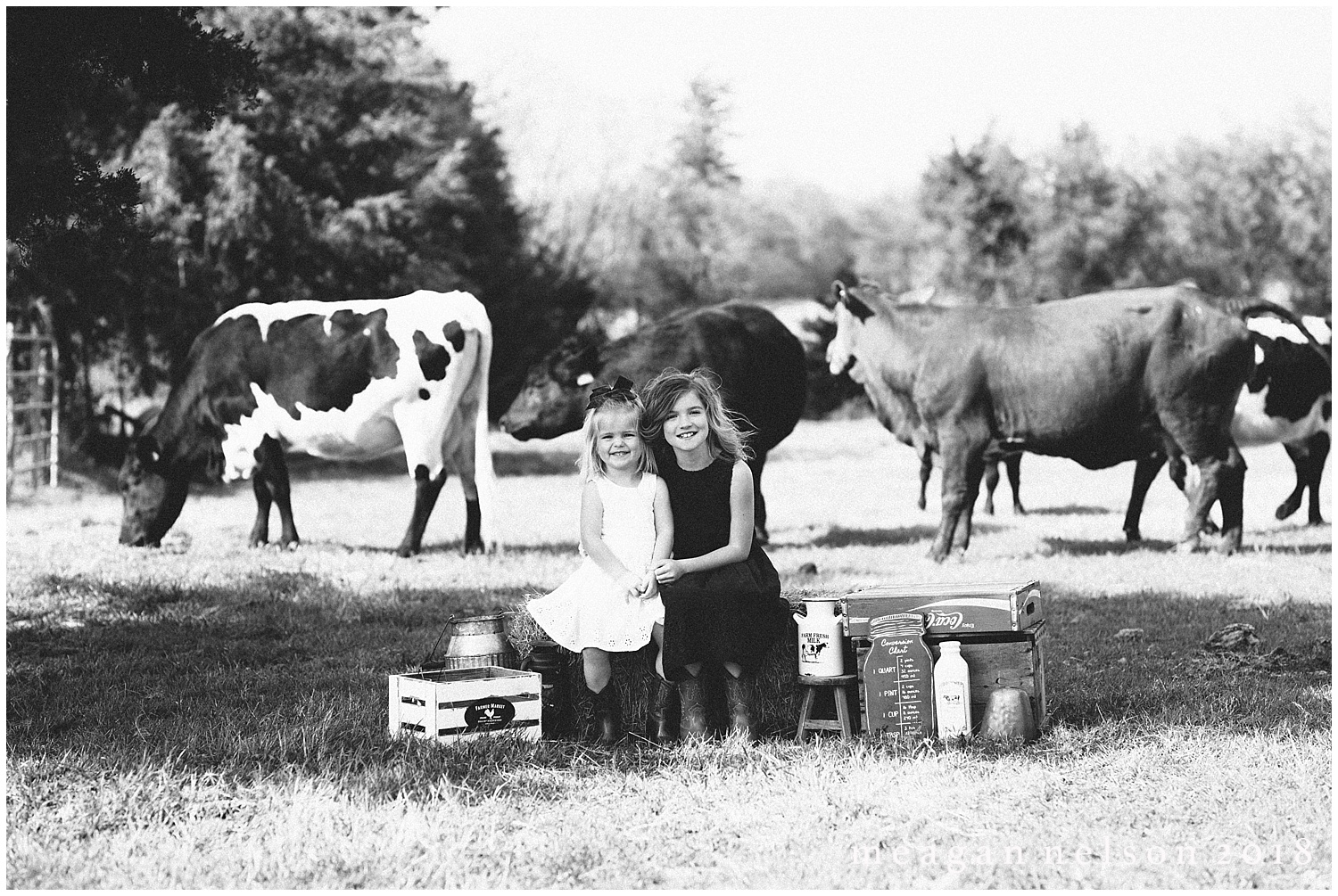 fort_worth_family_photographer_cow_mini_sessions049.jpg