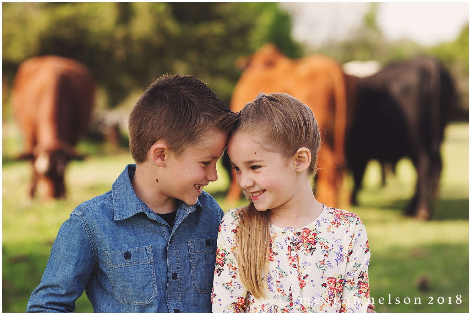 fort_worth_family_photographer_cow_mini_sessions052.jpg