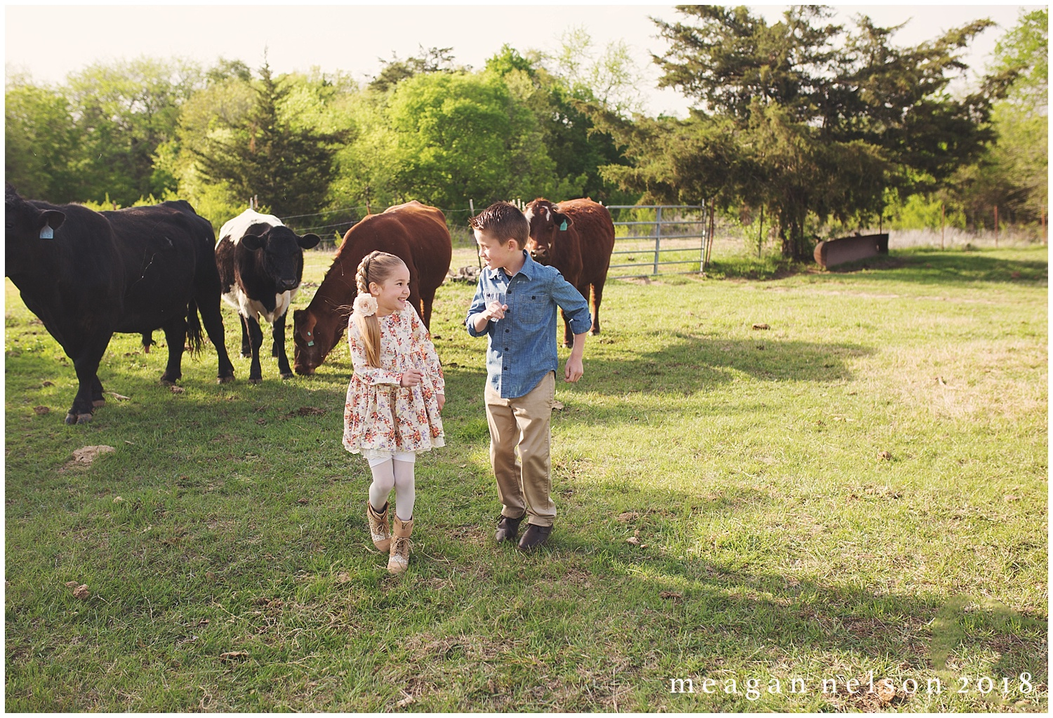 fort_worth_family_photographer_cow_mini_sessions057.jpg