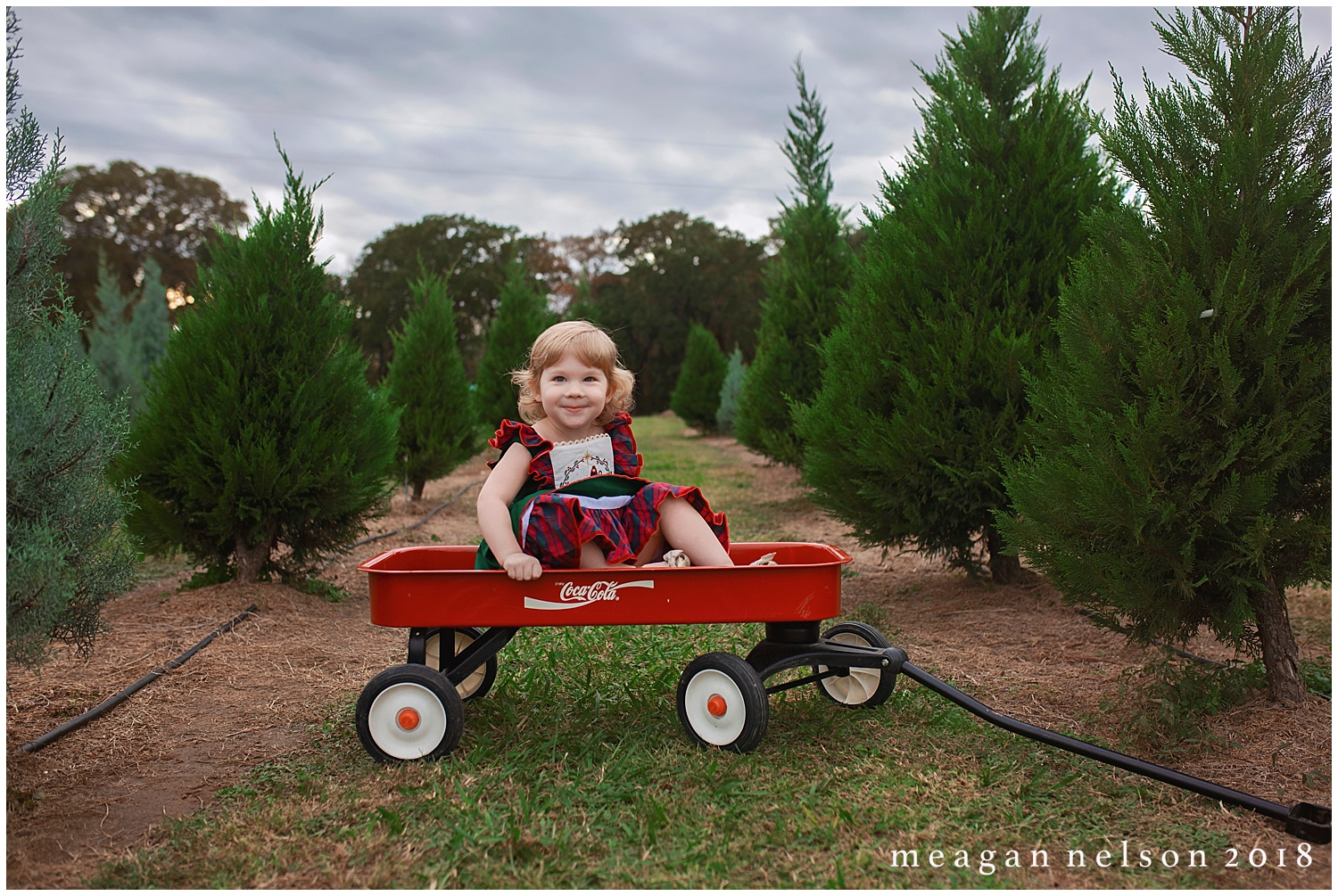 tree_farm_session_weatherford_tx_fort_worth_photographer043.jpg