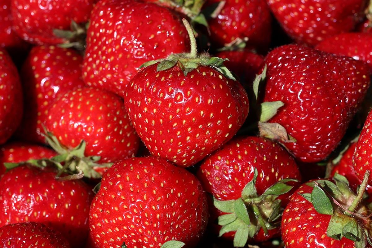 Strawberries_Web.jpg