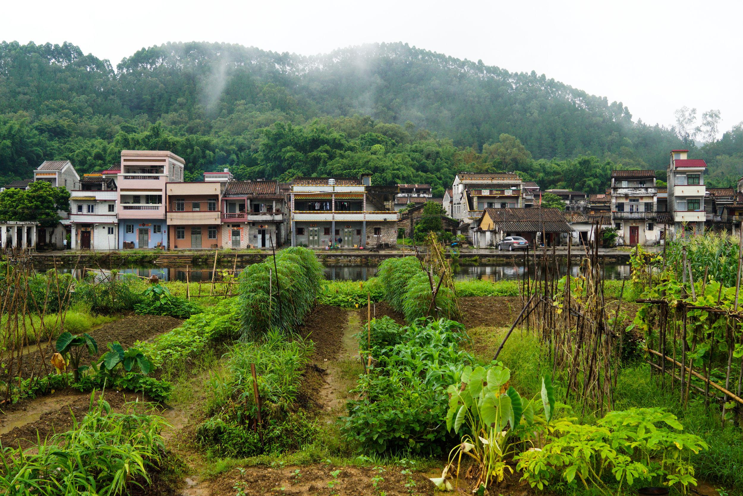 Taishan (Toisan)