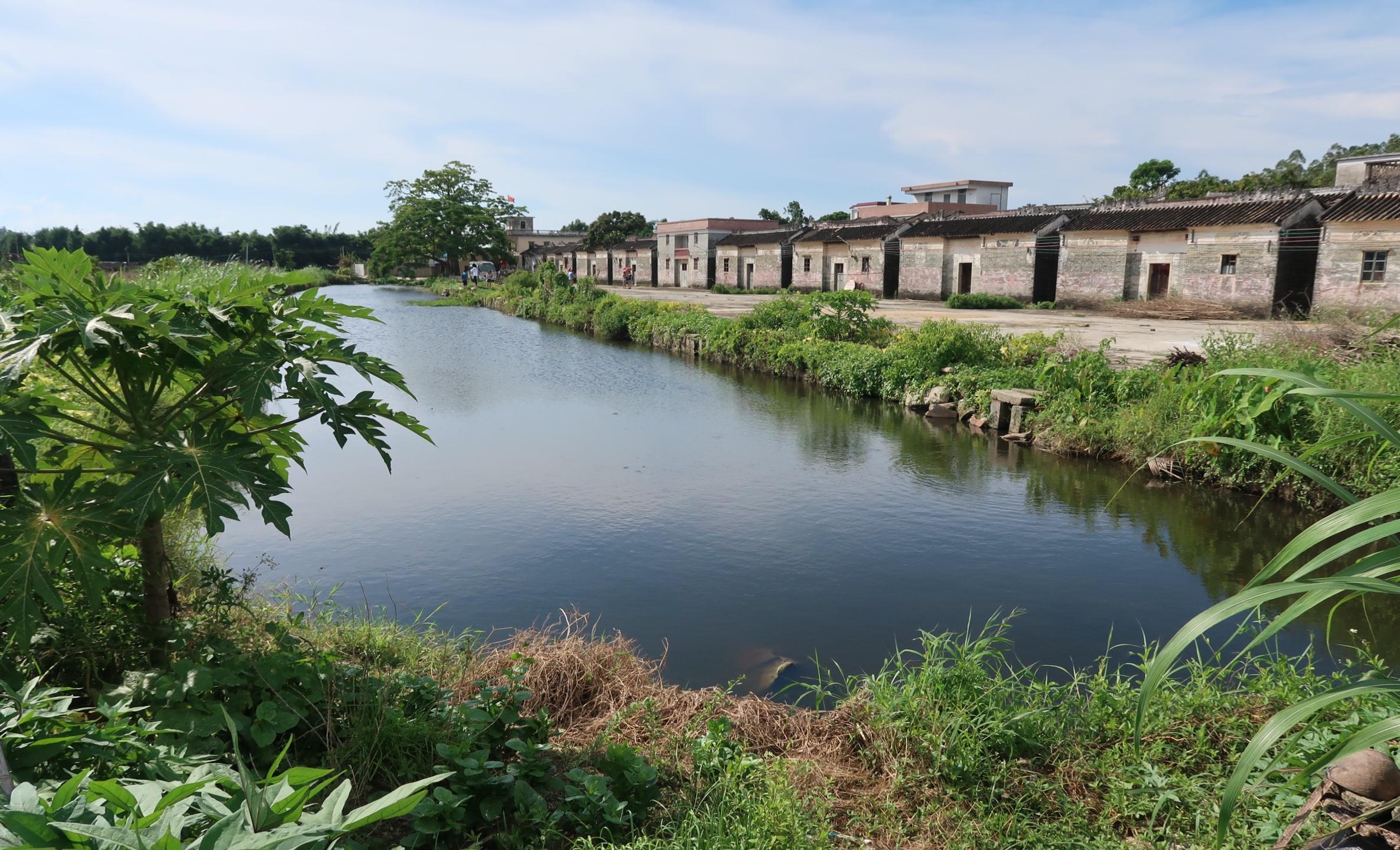 Taishan in Summer 2018