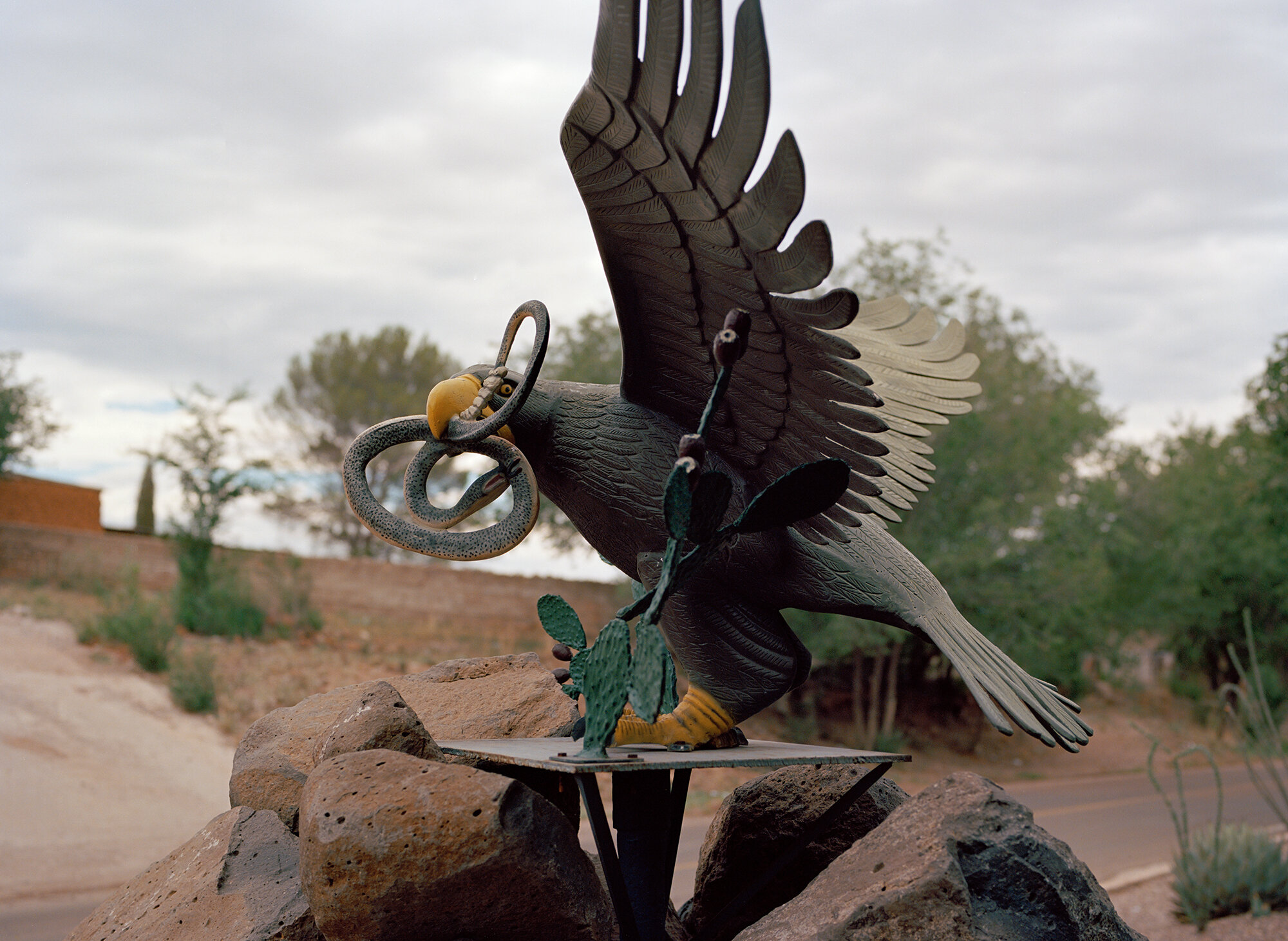 website_eagle.jpg