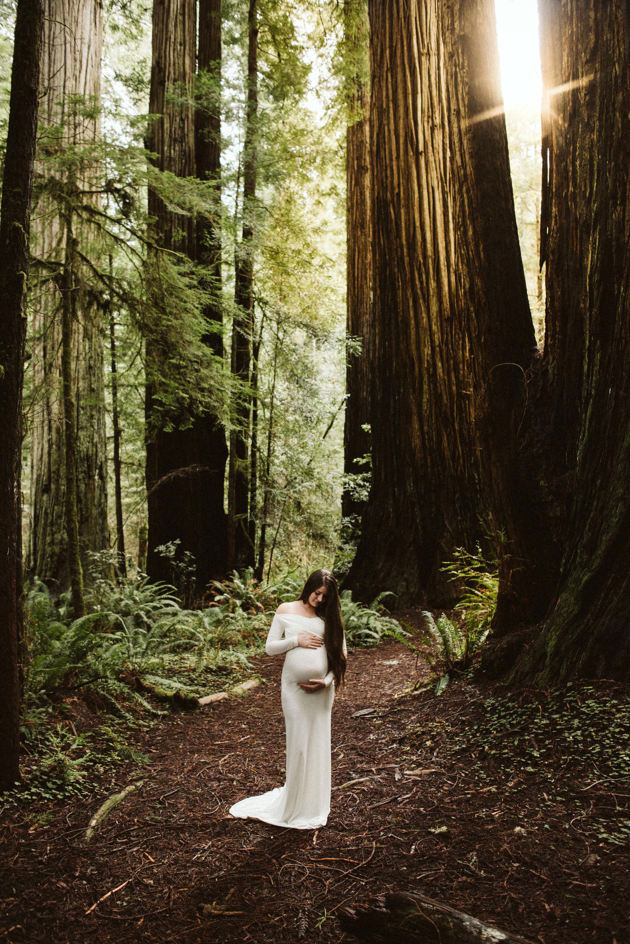 Maya Redwoods Maternity-18.jpg