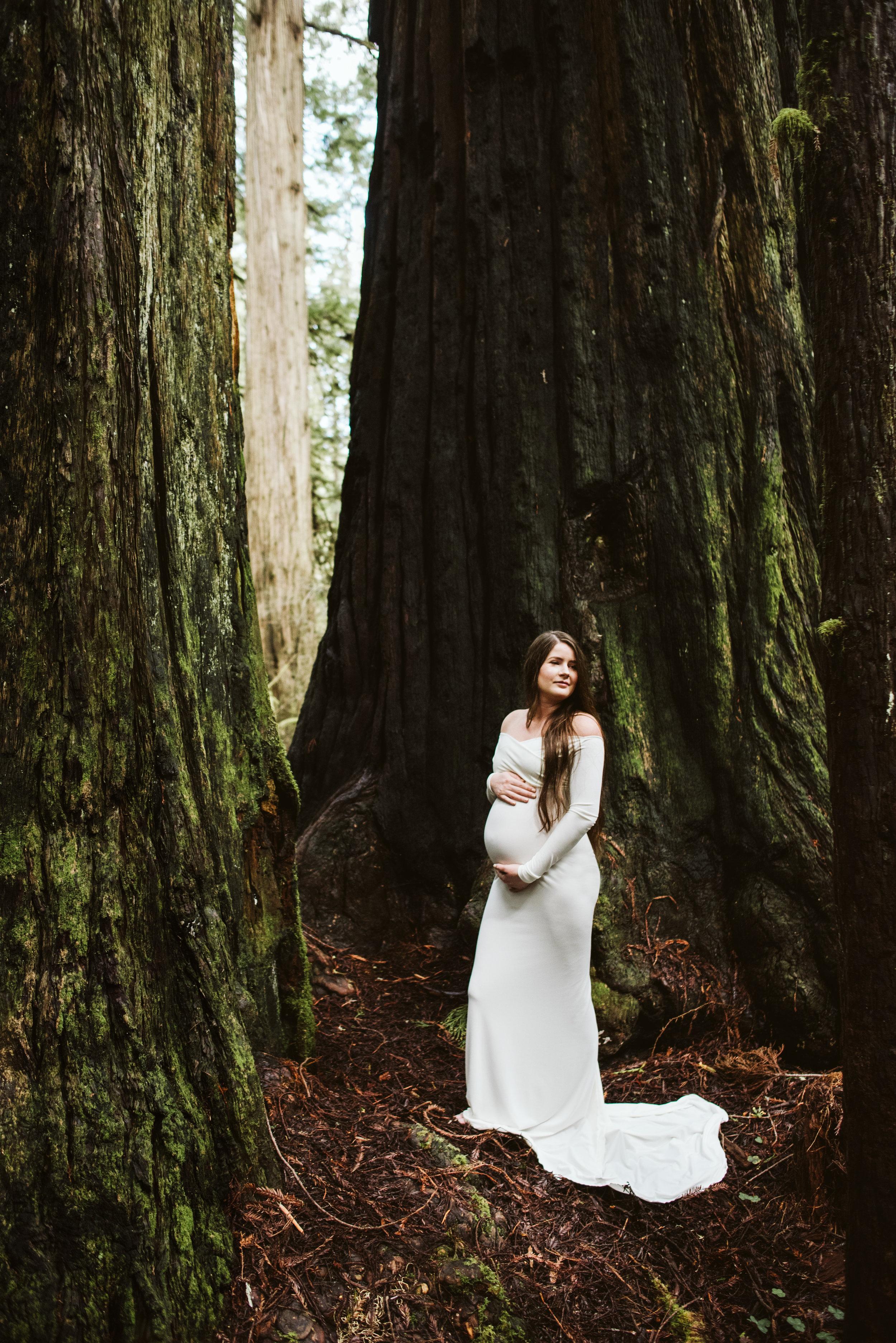 Maya Redwoods Maternity-25.jpg