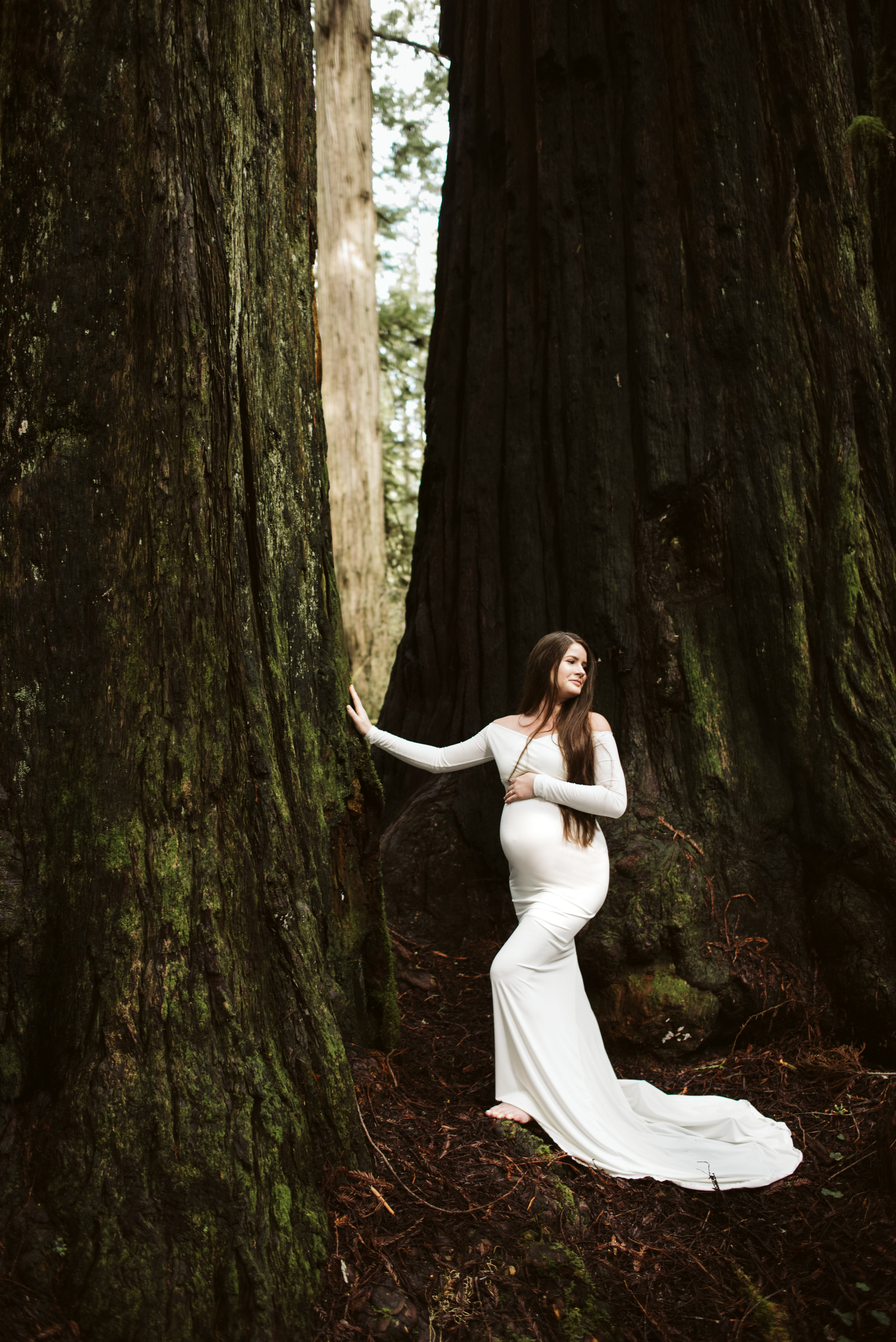 Maya Redwoods Maternity-27.jpg