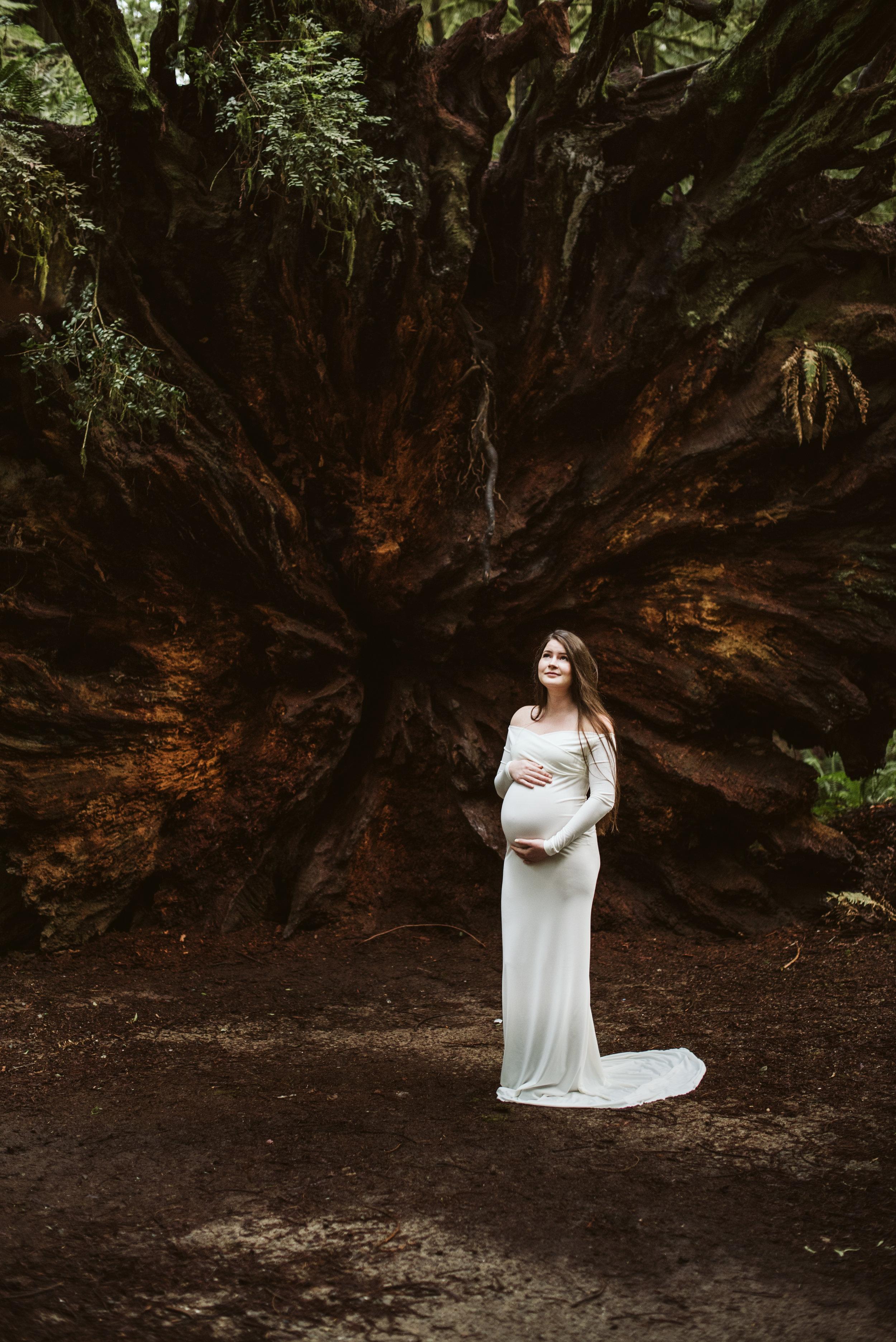 Maya Redwoods Maternity-35.jpg
