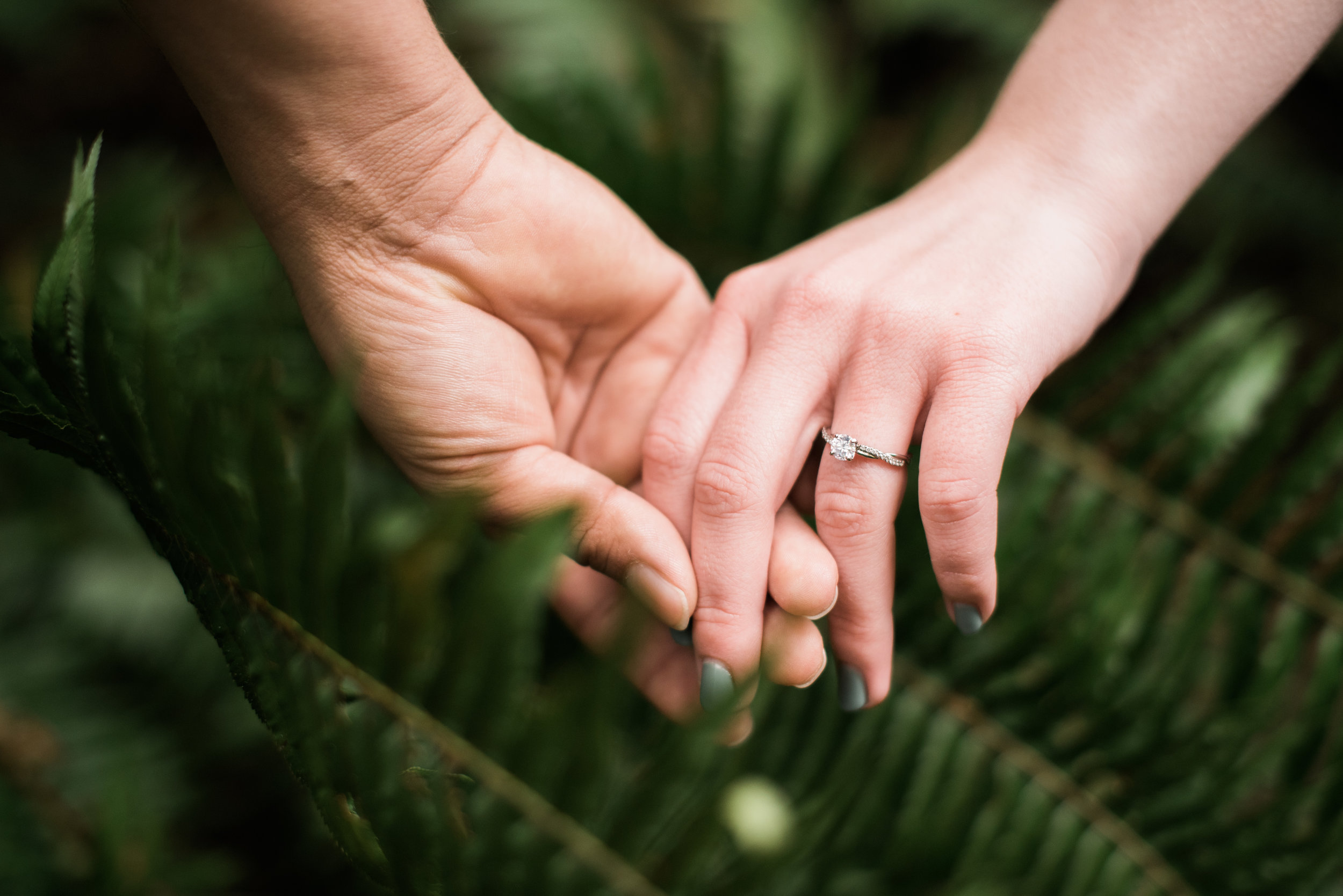 Redwoods Engagement 2019-110.jpg