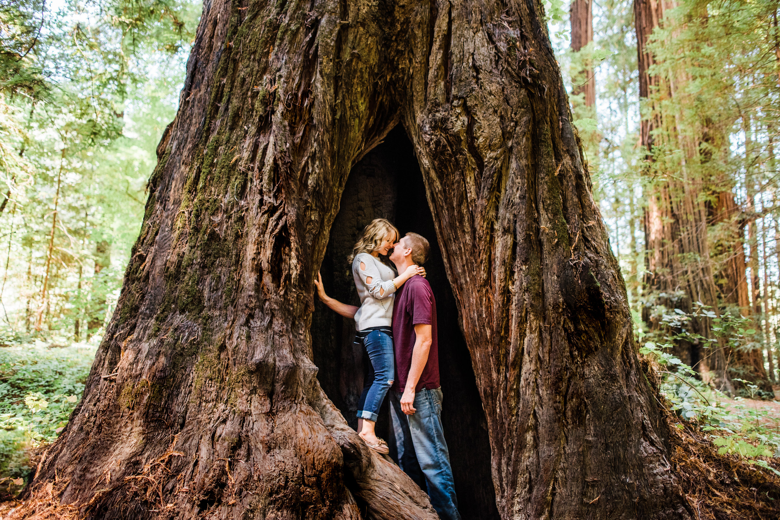 Ave of The Giants Engagement-27.jpg