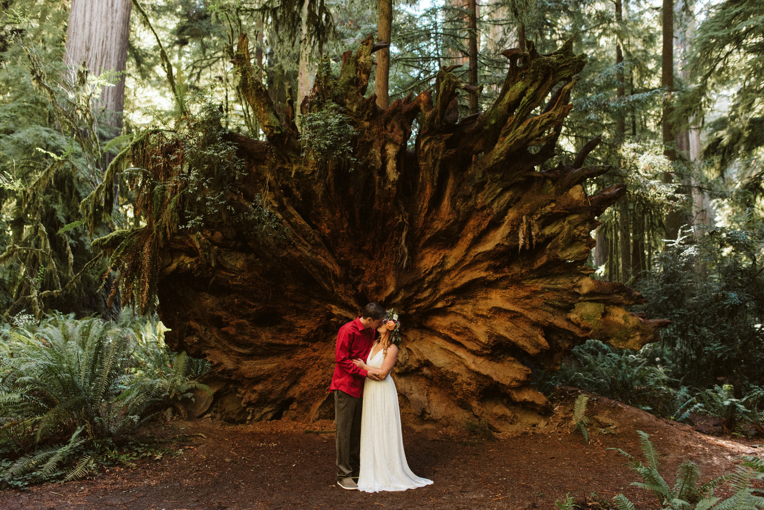 Redwoods Engagement peek-1.jpg