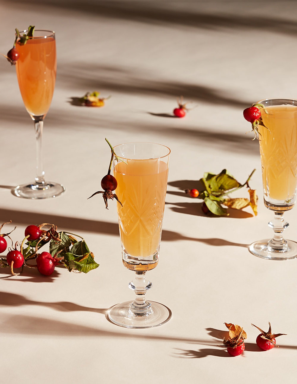 rosehip-prosecco-cocktail-drink-styling-prop-stylist-setdesigner-lifestylestylist-lauren-becker.jpg