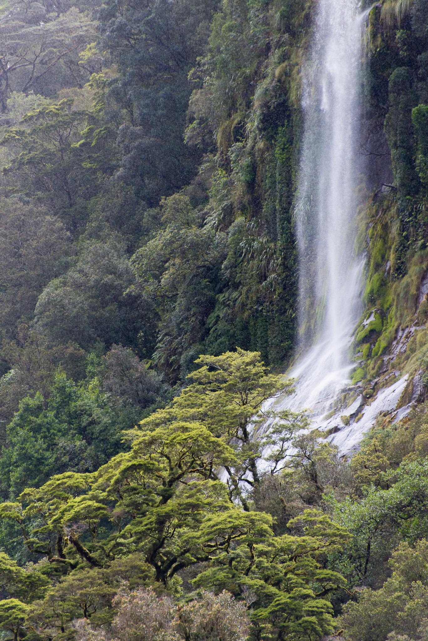 Doubful Sound, Fiordland NP. New Zealand
