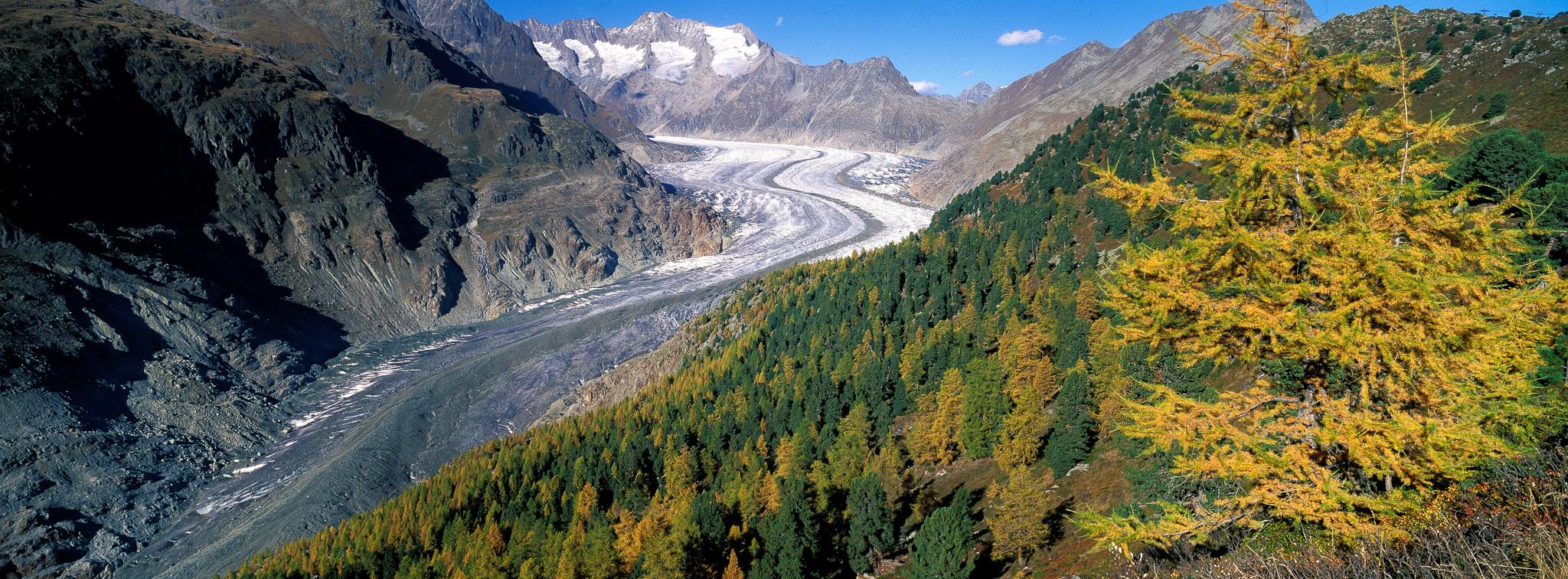 Glacier d'Aletsch, Switzerland