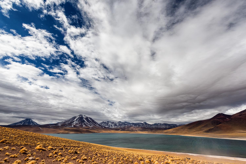 Laguna Miscanti, Altiplano, Chile