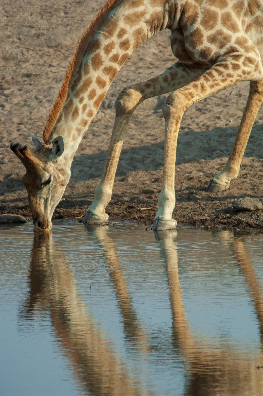 namibia-2006-40.jpg