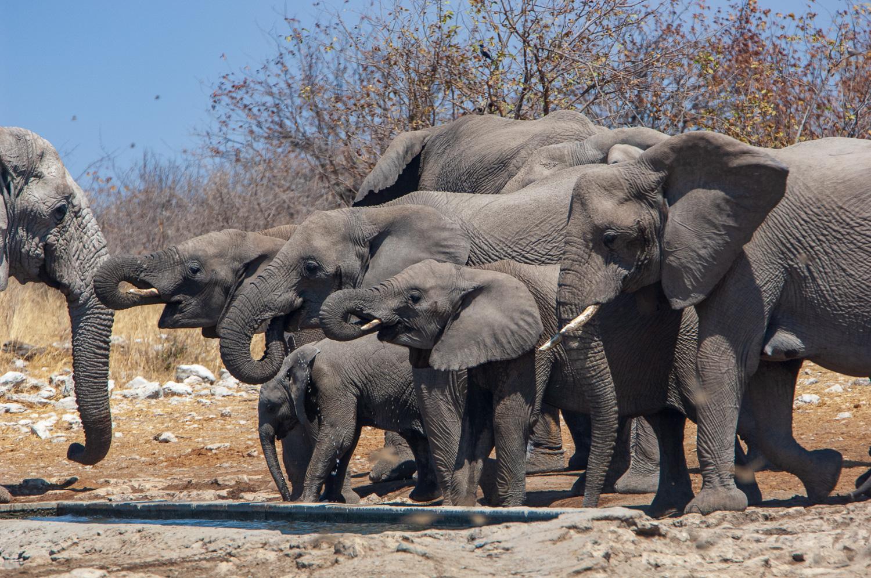 namibia-2006-43.jpg