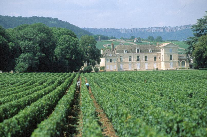 chateau Meursault. Côte-d'Or Tourisme © R. KREBEL