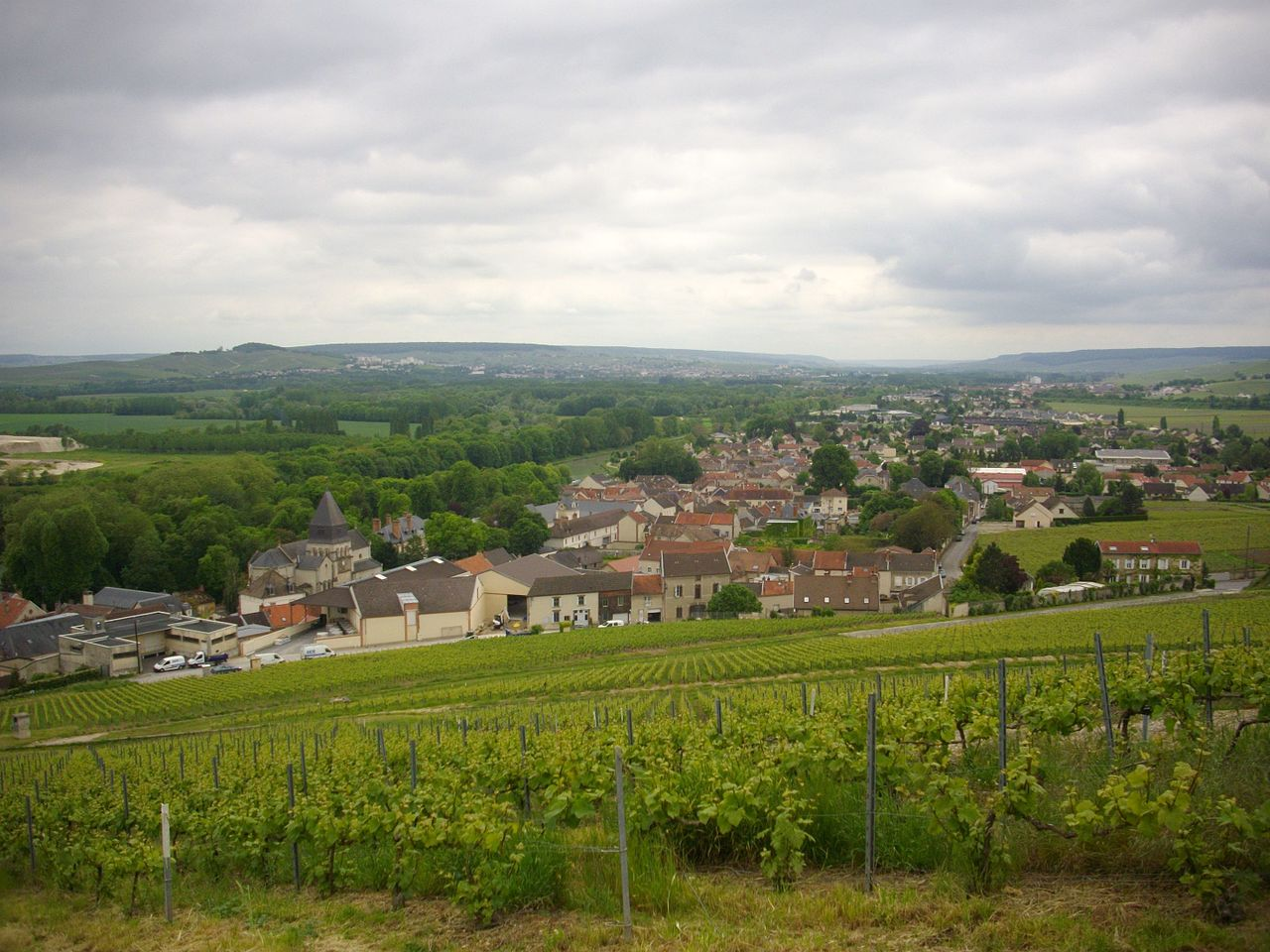 Mareuil-sur-Ay foto Fab5669