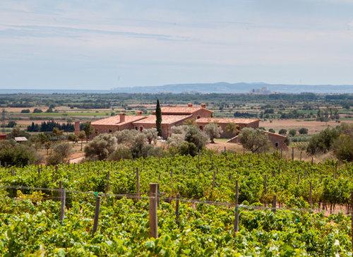 vingården espelt
