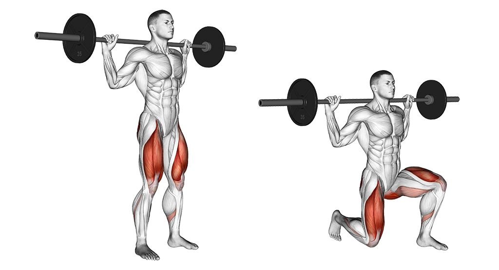 00781101-Barbell-Rear-Lunge_Thighs_medium.png