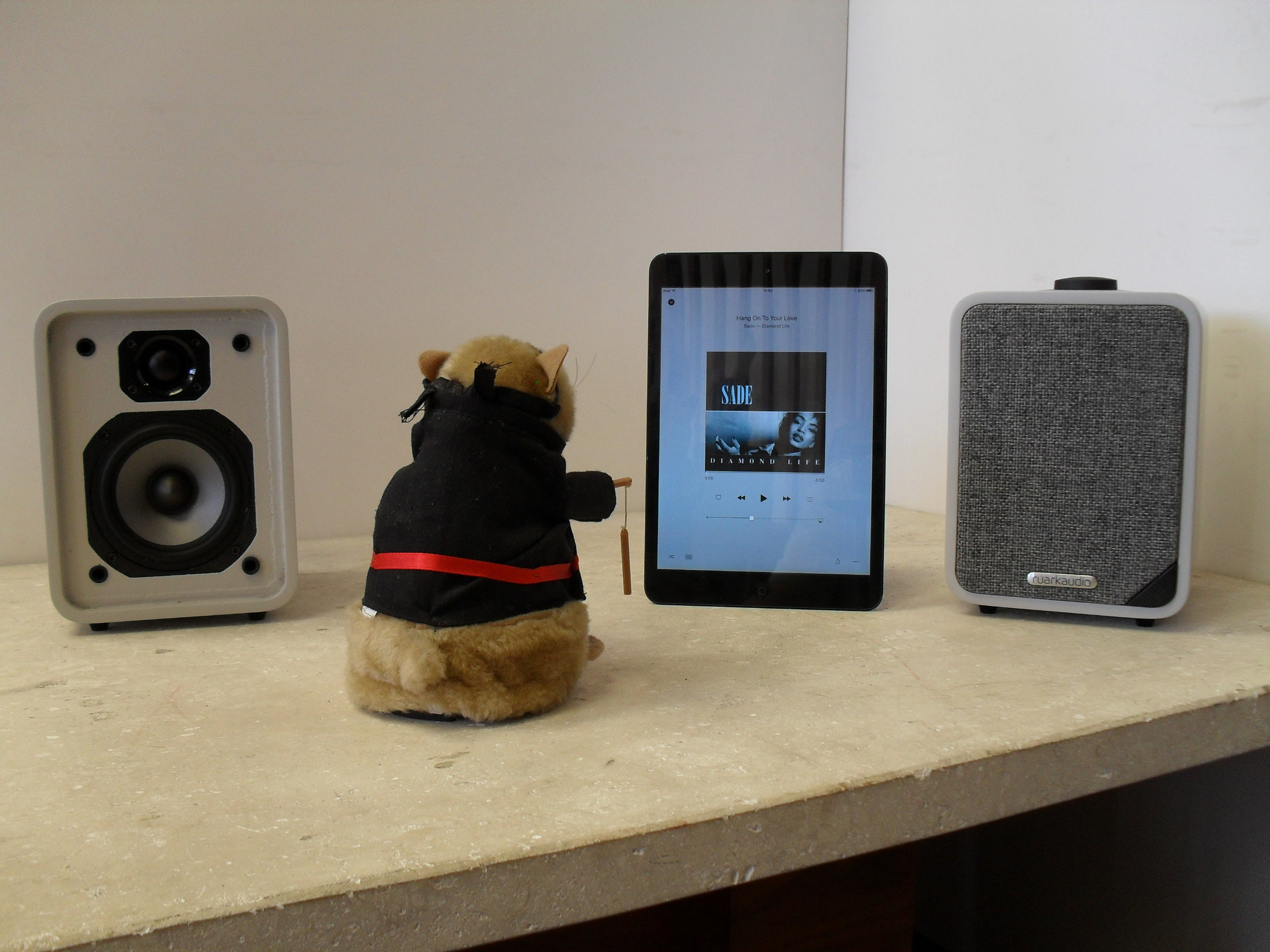KungFu Hamster listening to Sade... he's a smooth operator!