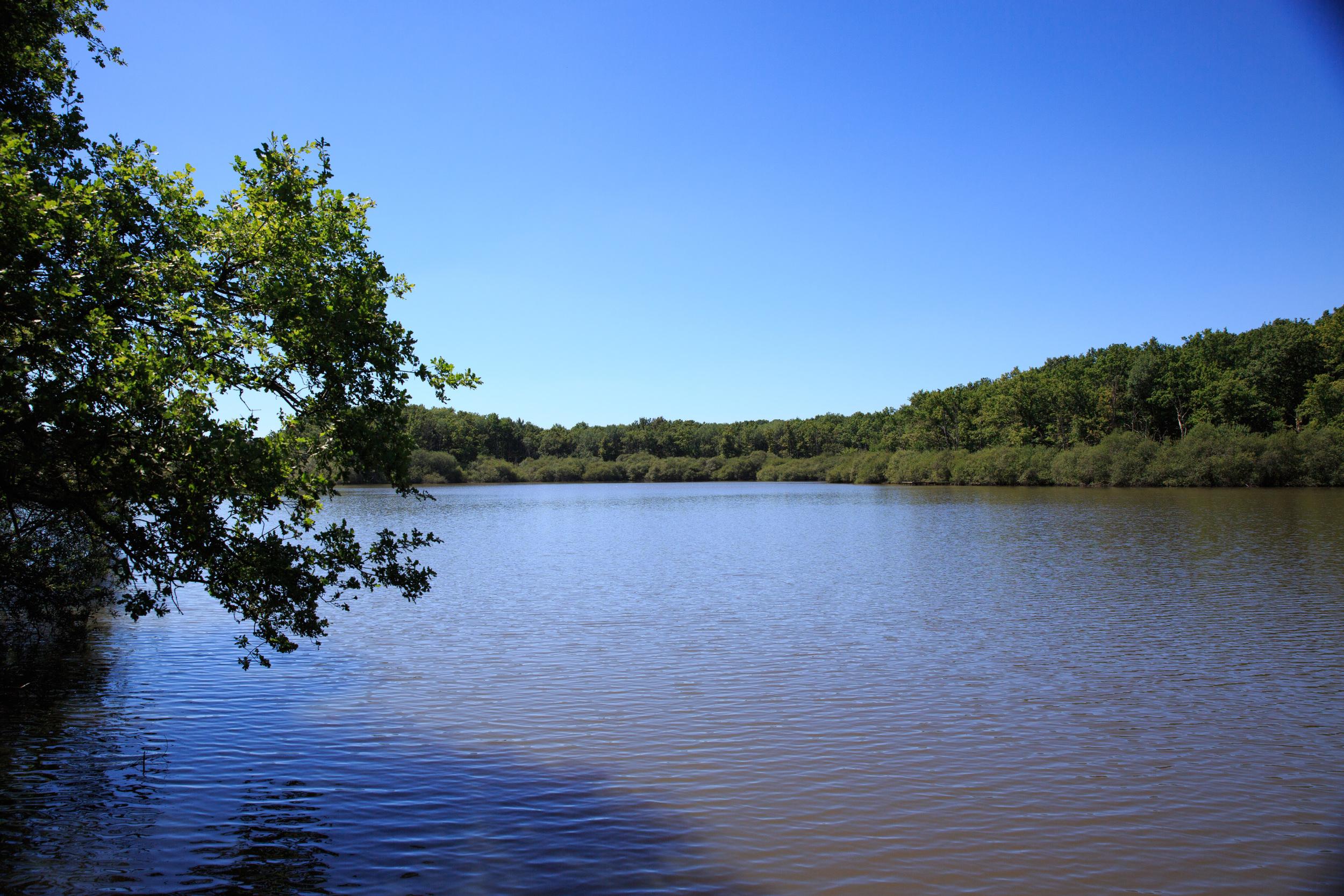 Lake-Meillant-2013_145.jpg