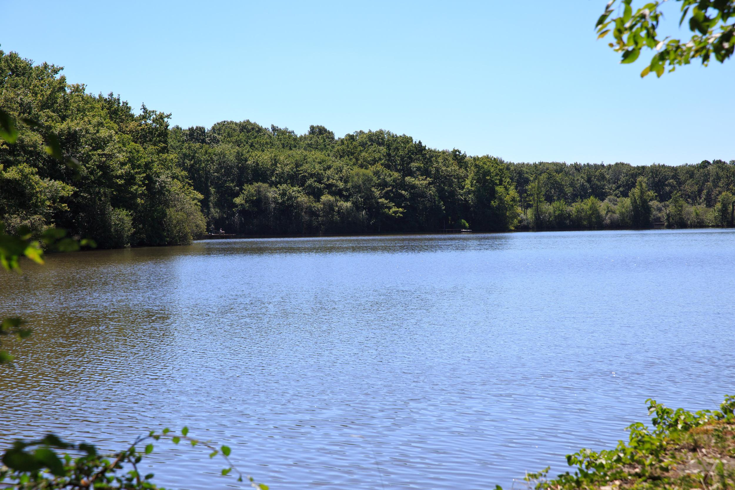Lake-Meillant-2013_157.jpg
