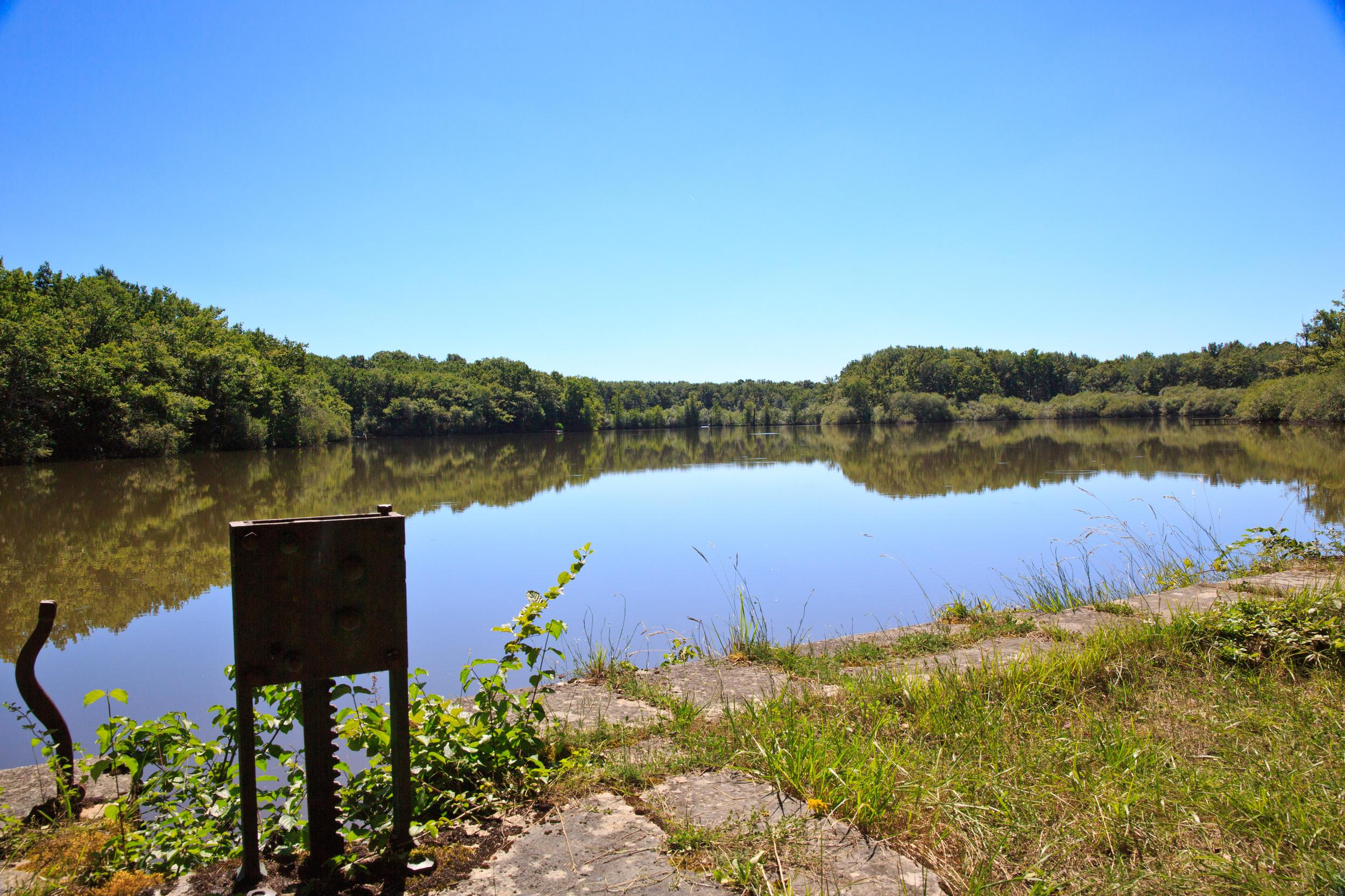 Lake-Meillant-2013_192.jpg