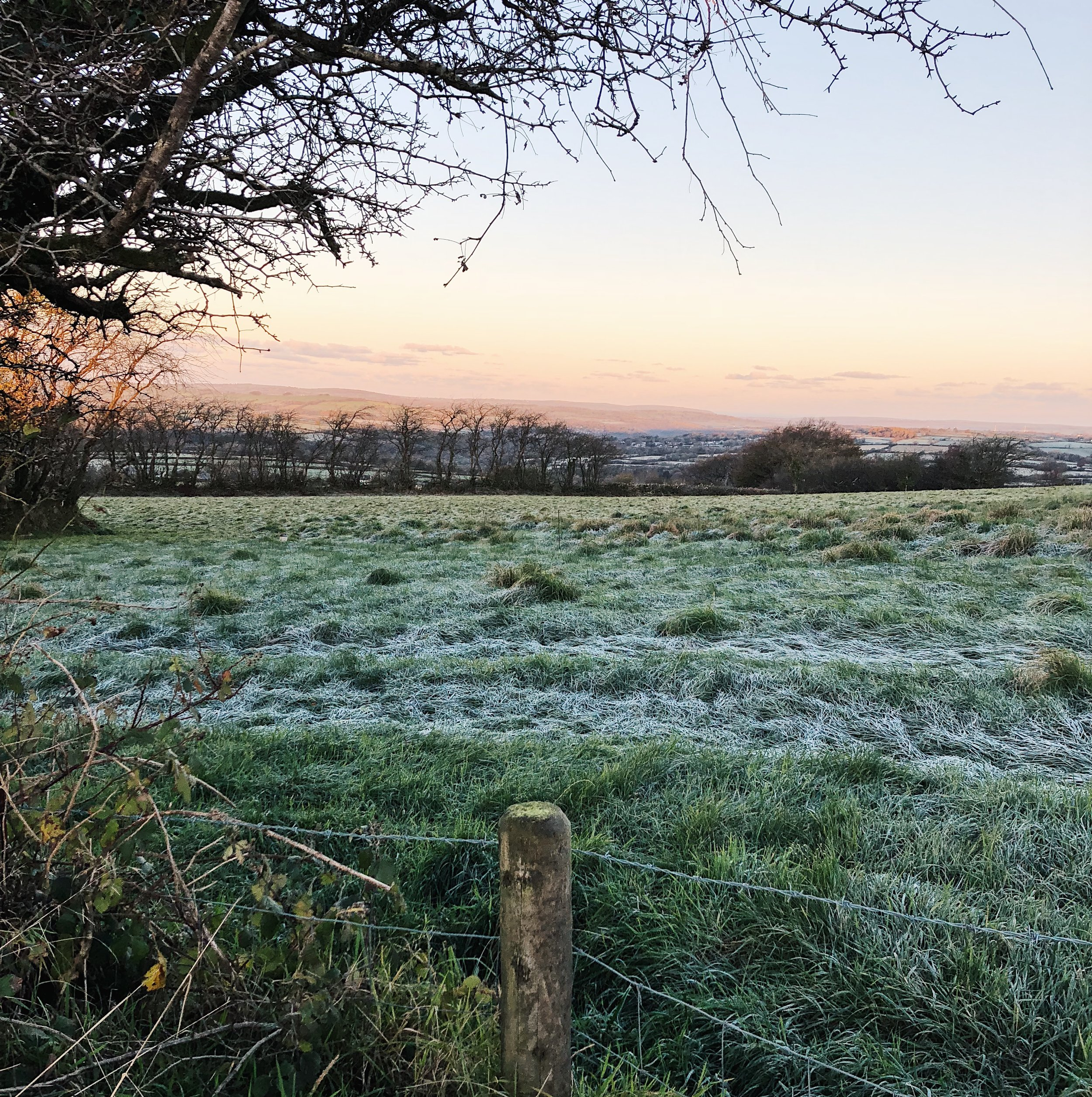 A crisp Autumn morning in Carmarthenshire. What a wonderful view to wake up to.