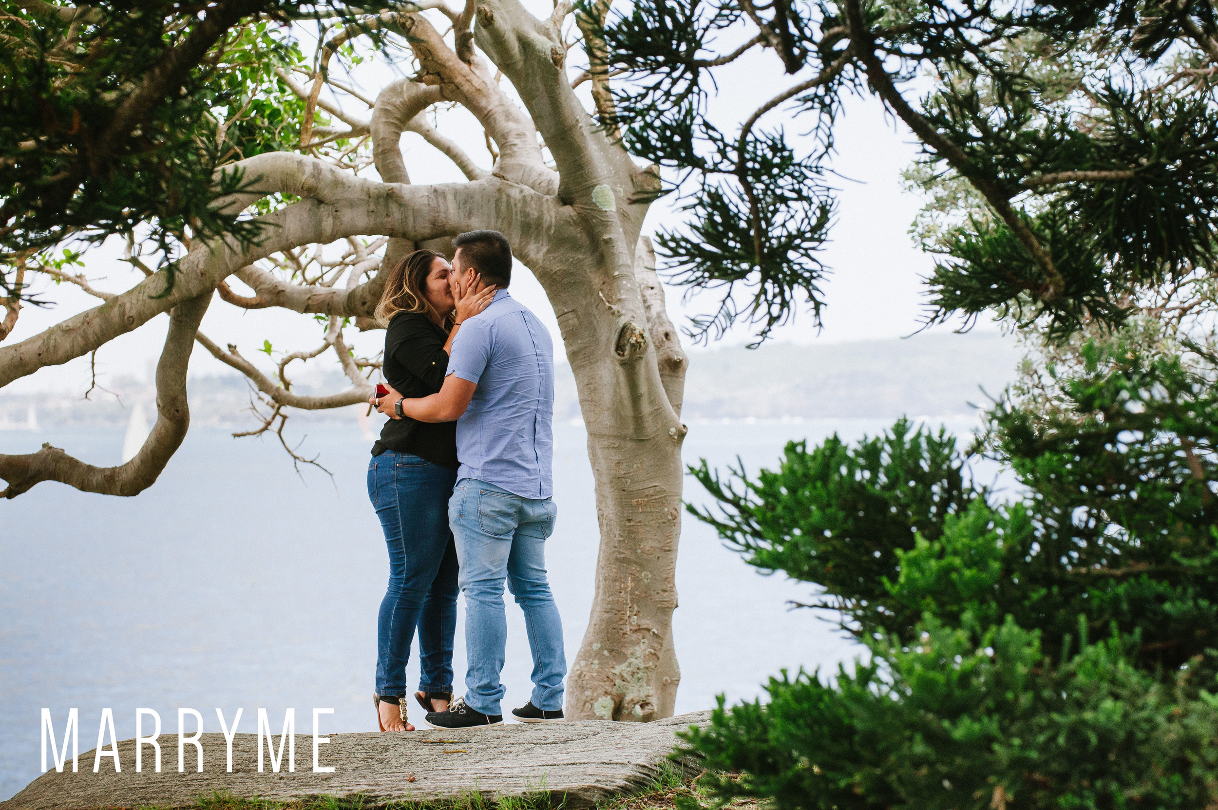 Sydney Harbour Shark Island marriage proposal 3