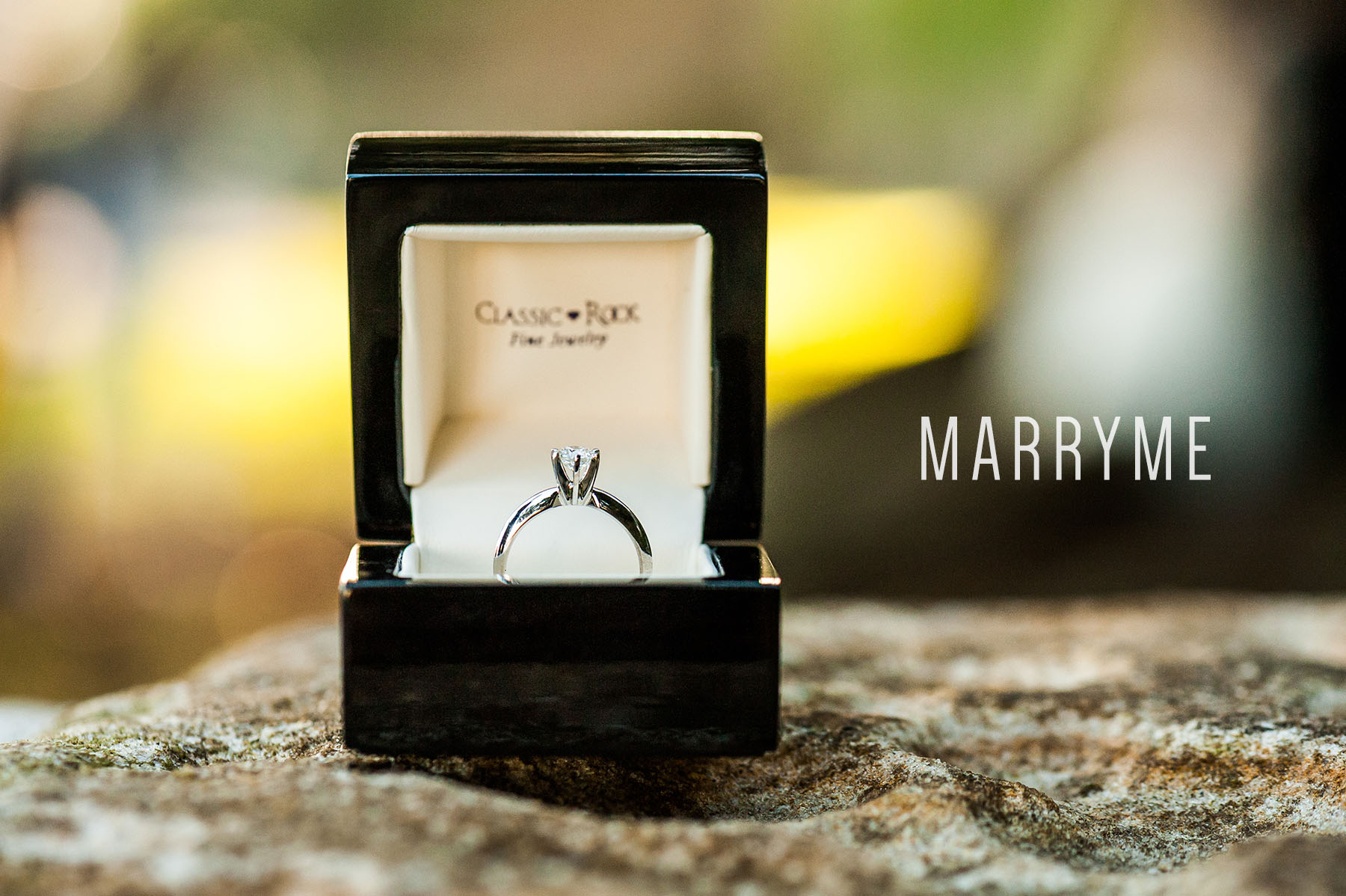 Sydney Real Marriage Proposal Kirribilli Location Sydney 1