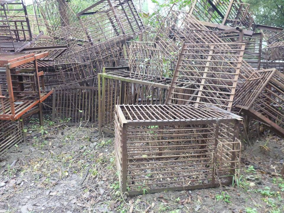 The tiny cages the bears are kept in their whole lives at bear bile farms, before being rescued.