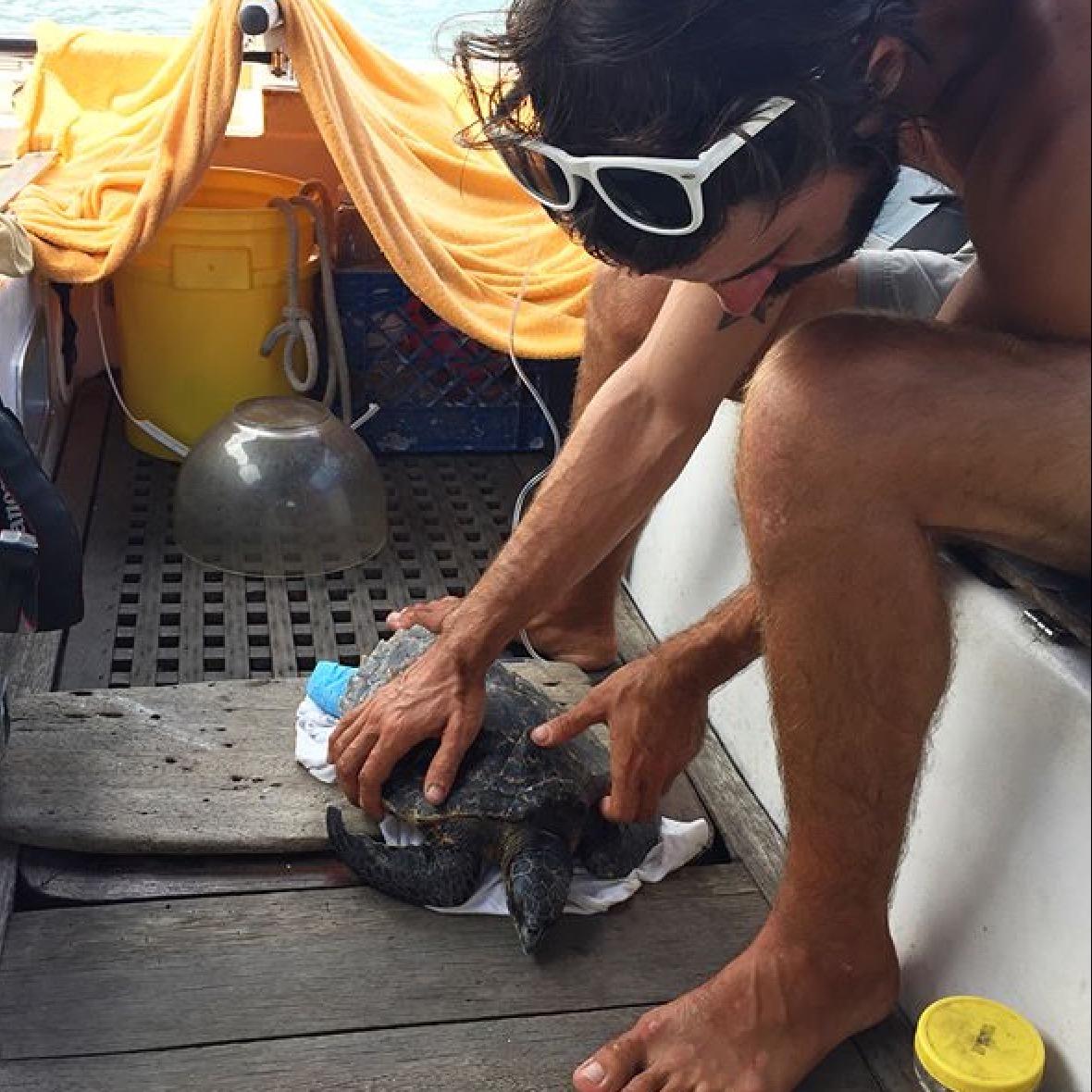 Billie recieving fluids on board