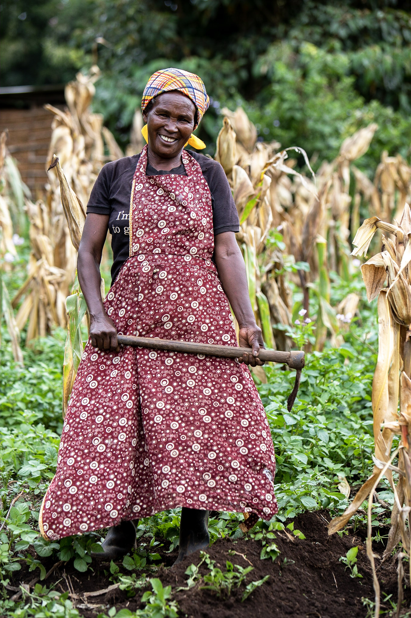 Farming & Five Talents, Kenya