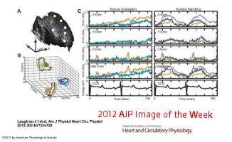 2012 AJP Image of the Week