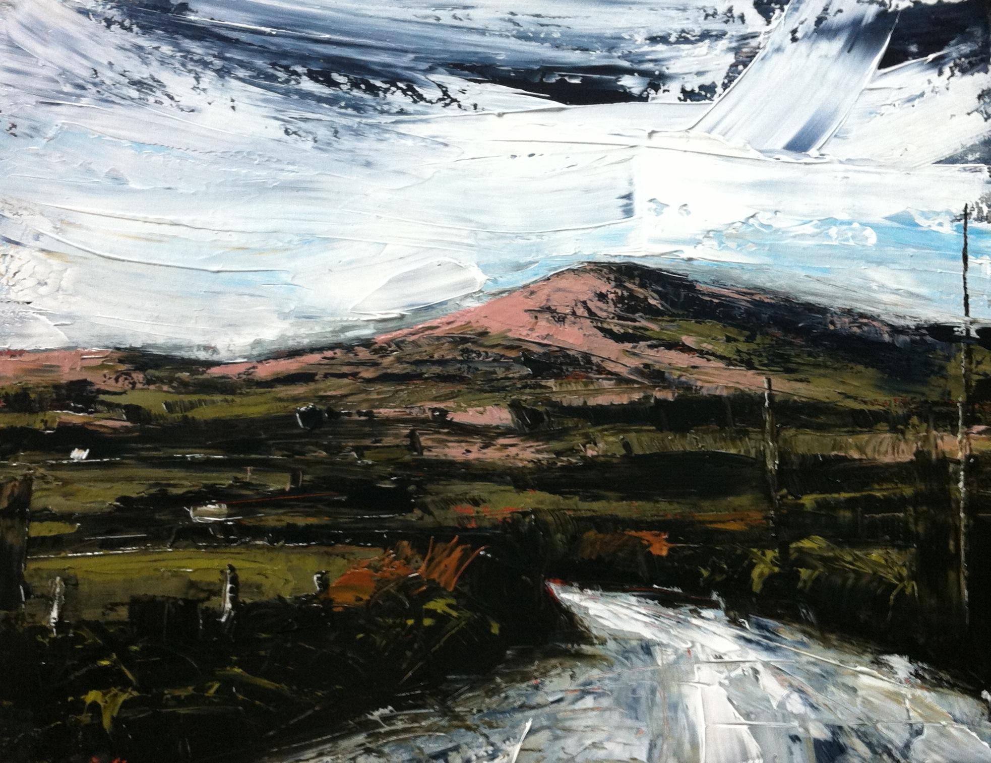 Oil sketch - Mount Gabriel series,2015