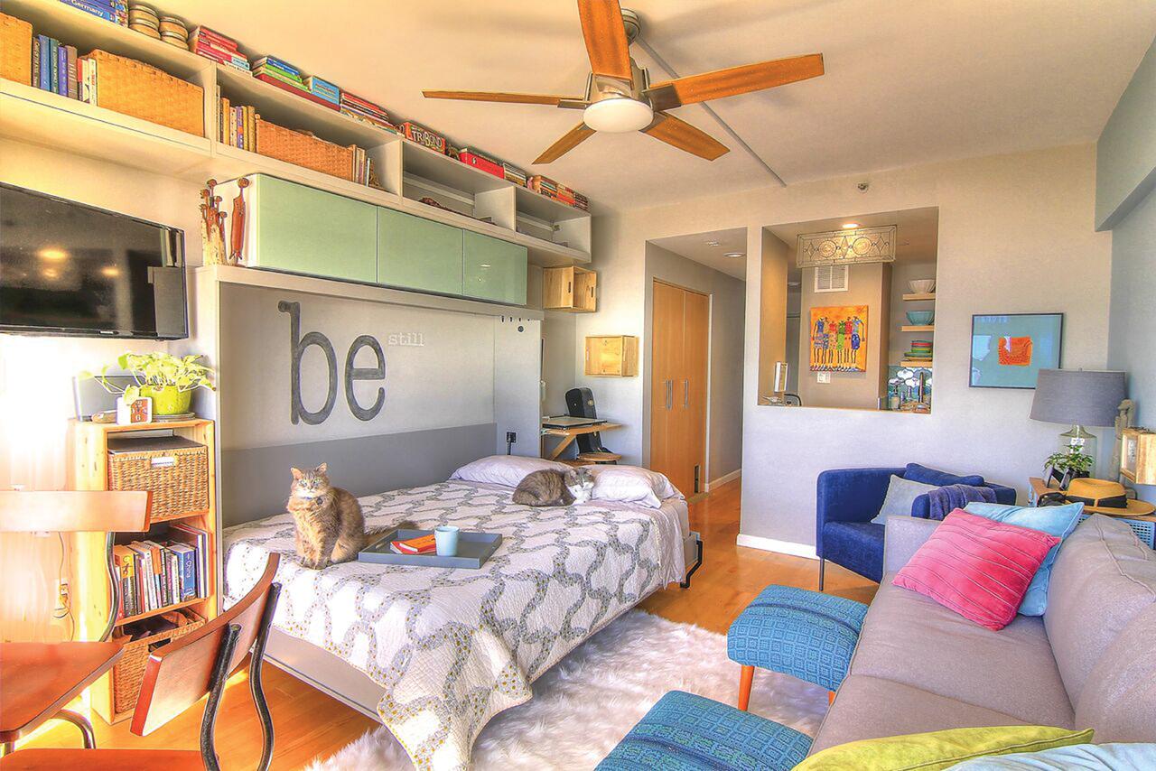 murphybed  open-living space.jpg
