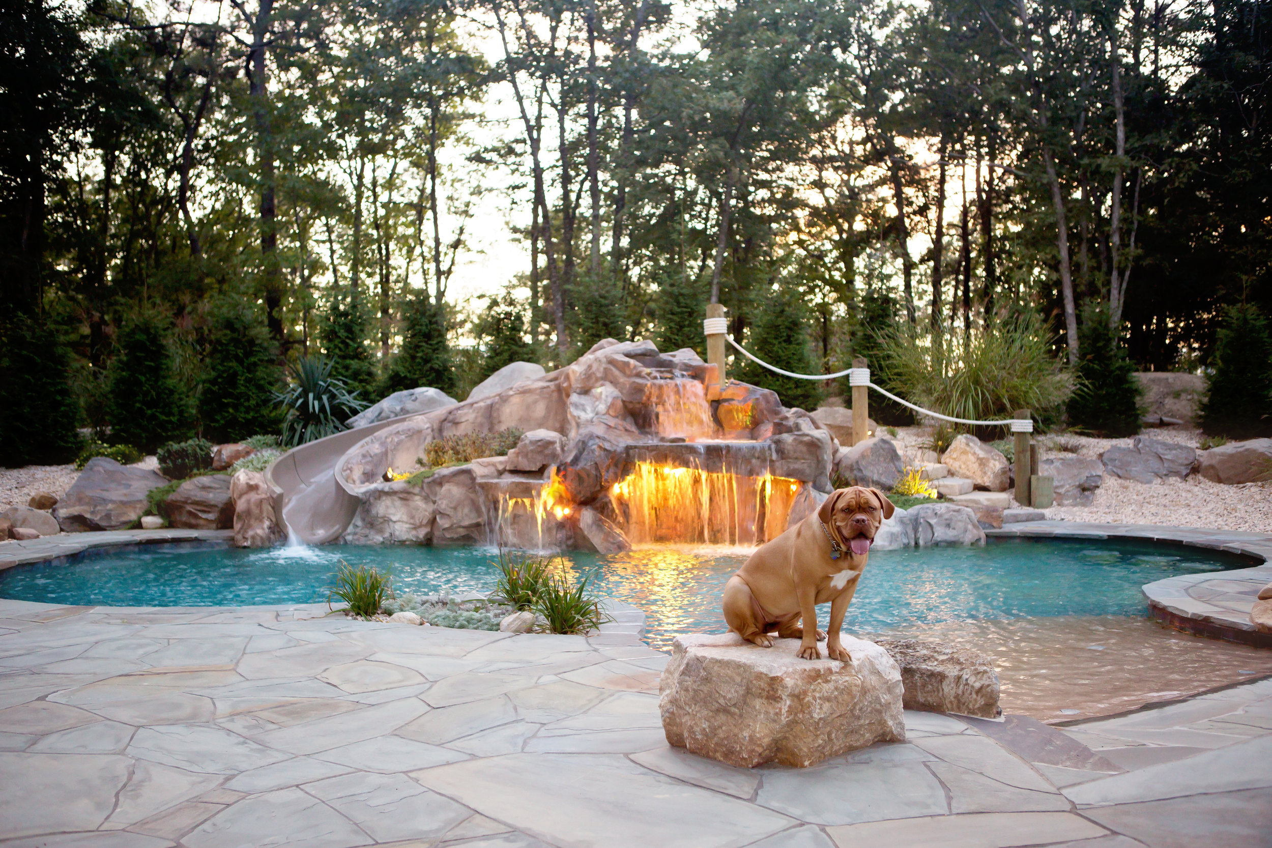 Cat3 Gunite Freeform Silver Gibbons Pools.jpg