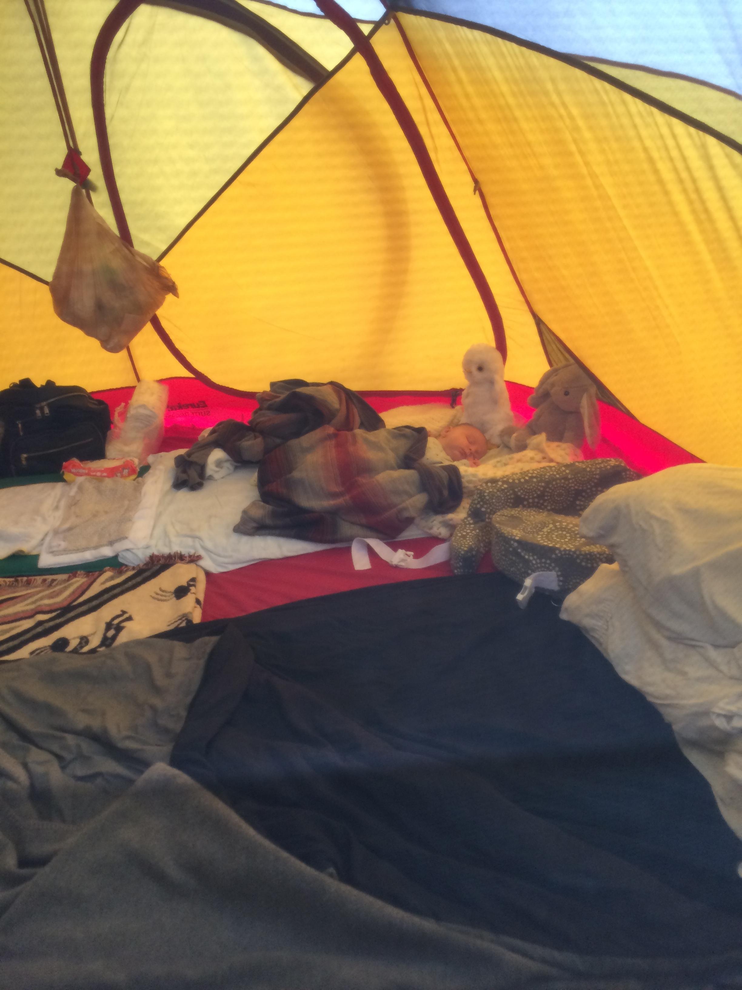 Benji breaking in the new family-size tent in Kamouraska!