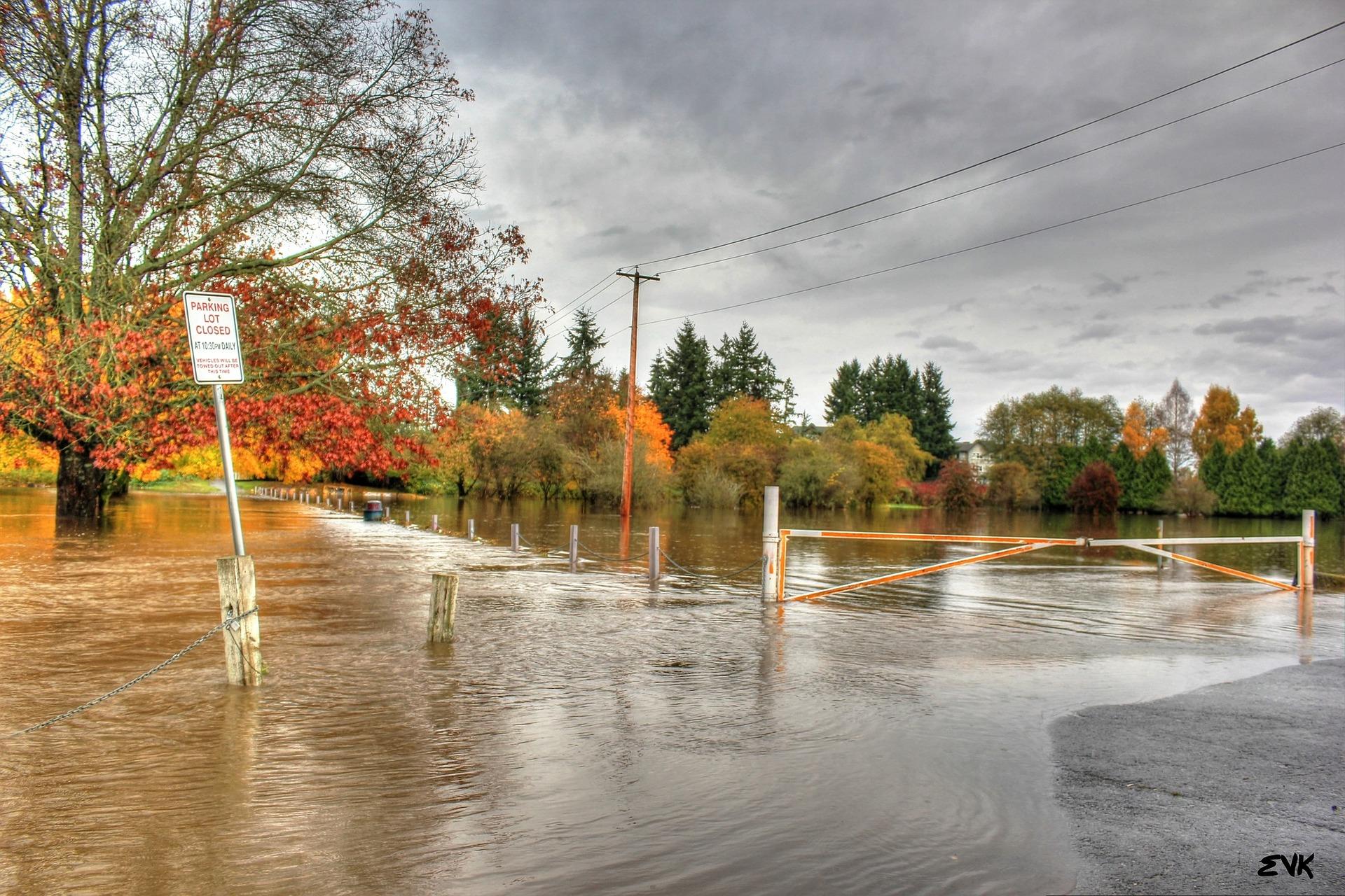flood-63832_1920.jpg