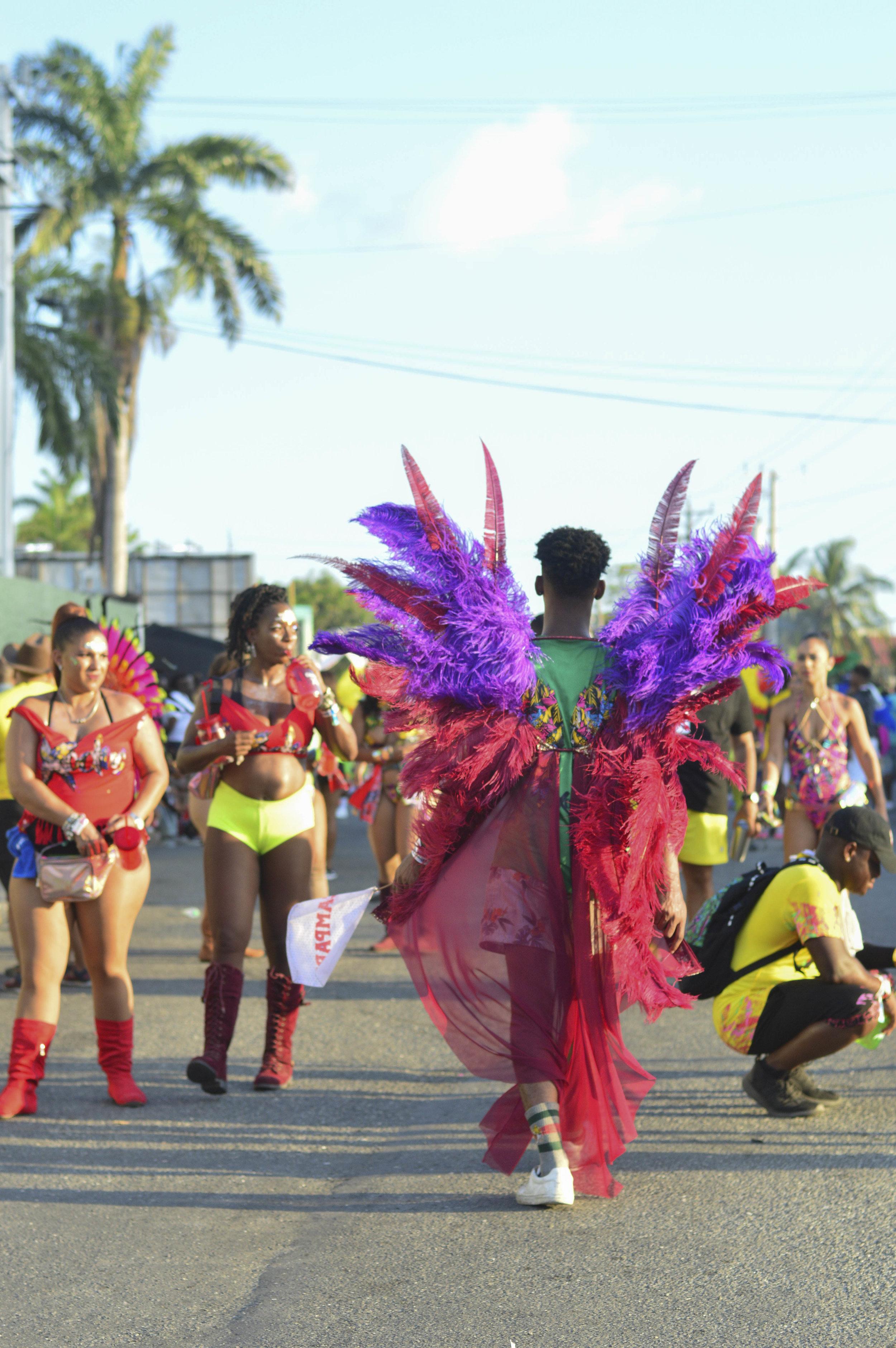 carnival2019_jeanalindo-14.jpg