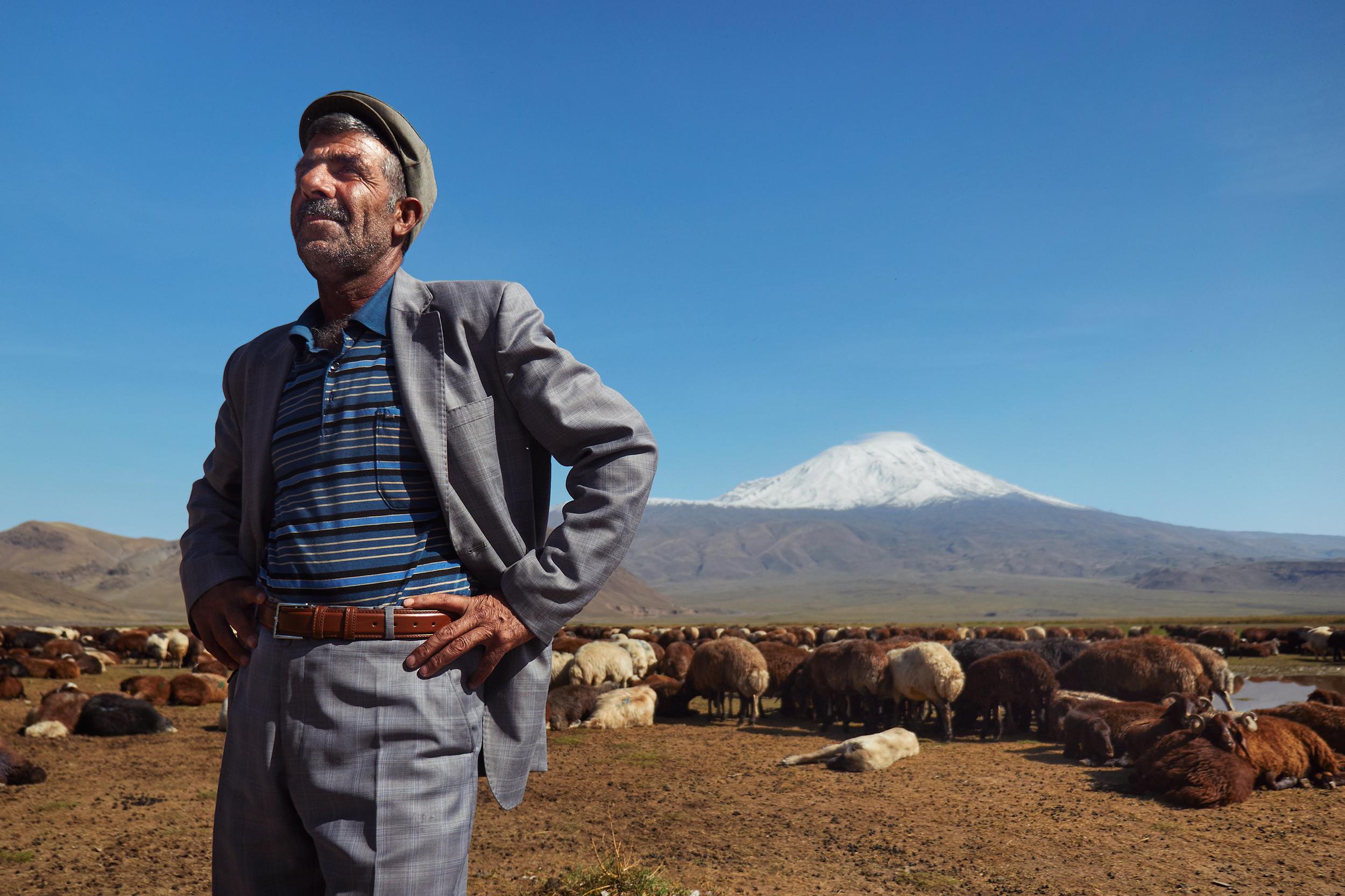 Mustafa standing near his flock of sheep