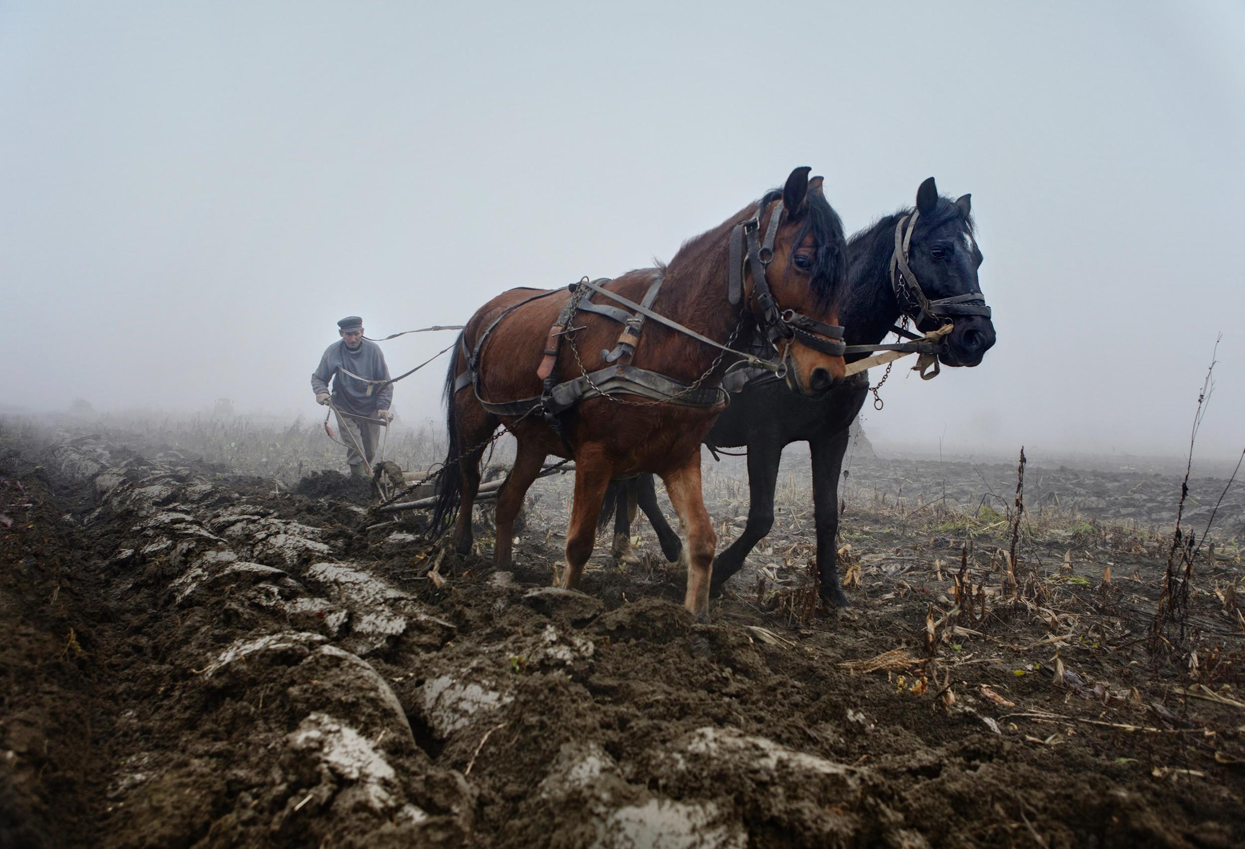 Romanian farmer ploughing lend